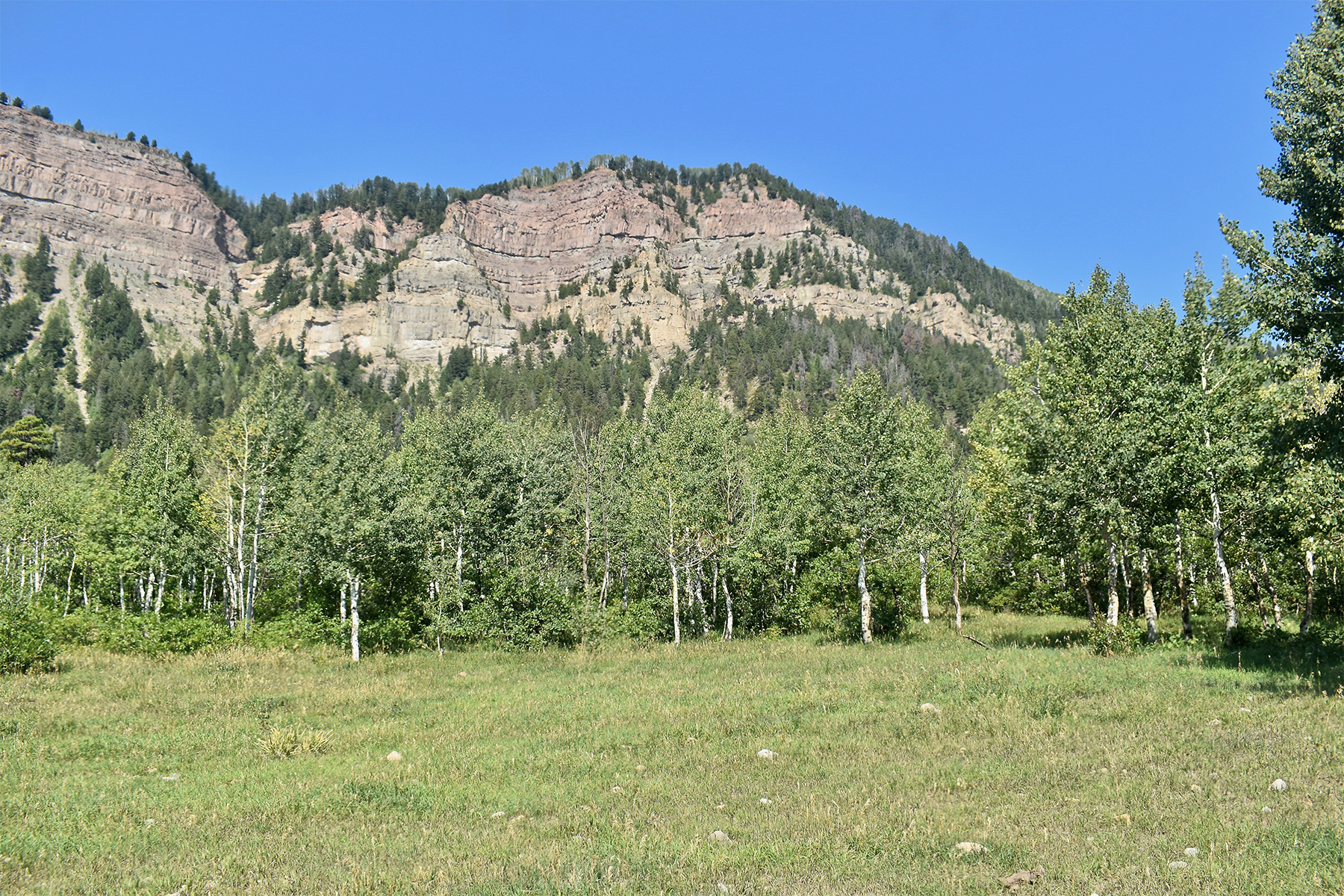 Land for Sale at Montagna II TBD N US Hwy 550 Montagna II Durango, Colorado 81301 United States