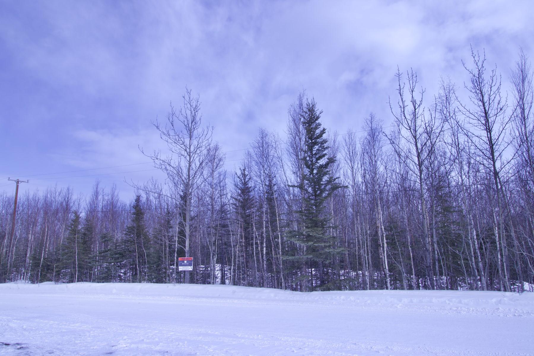 Terreno por un Venta en Lot 8 Foxy Lane Delta Junction, Alaska 99737 Estados Unidos