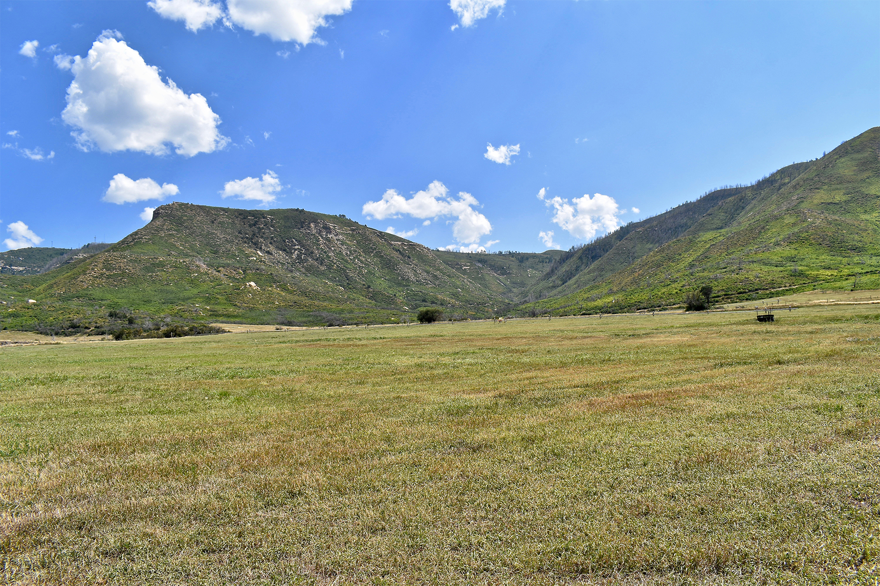 Additional photo for property listing at Lazy L Ranch 42760 HWY 160 曼科斯, 科罗拉多州 81328 美国
