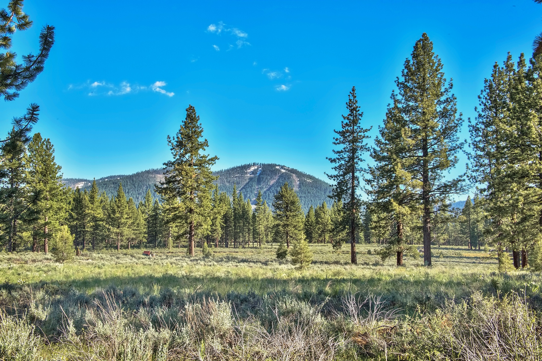 Land for Active at 9701 North Shore Boulevard, Truckee, CA 9701 North Shore Blvd. 9701 Highway 267 Truckee, California 96161 United States