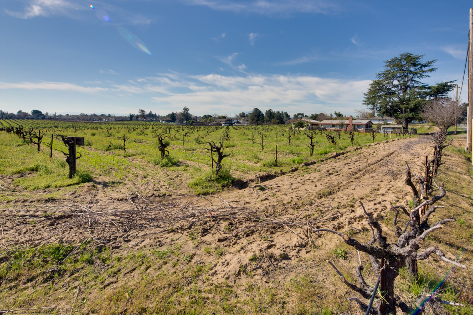 Additional photo for property listing at Zoned For Residential Development 2371 Oakley Road Oakley, California 94561 United States