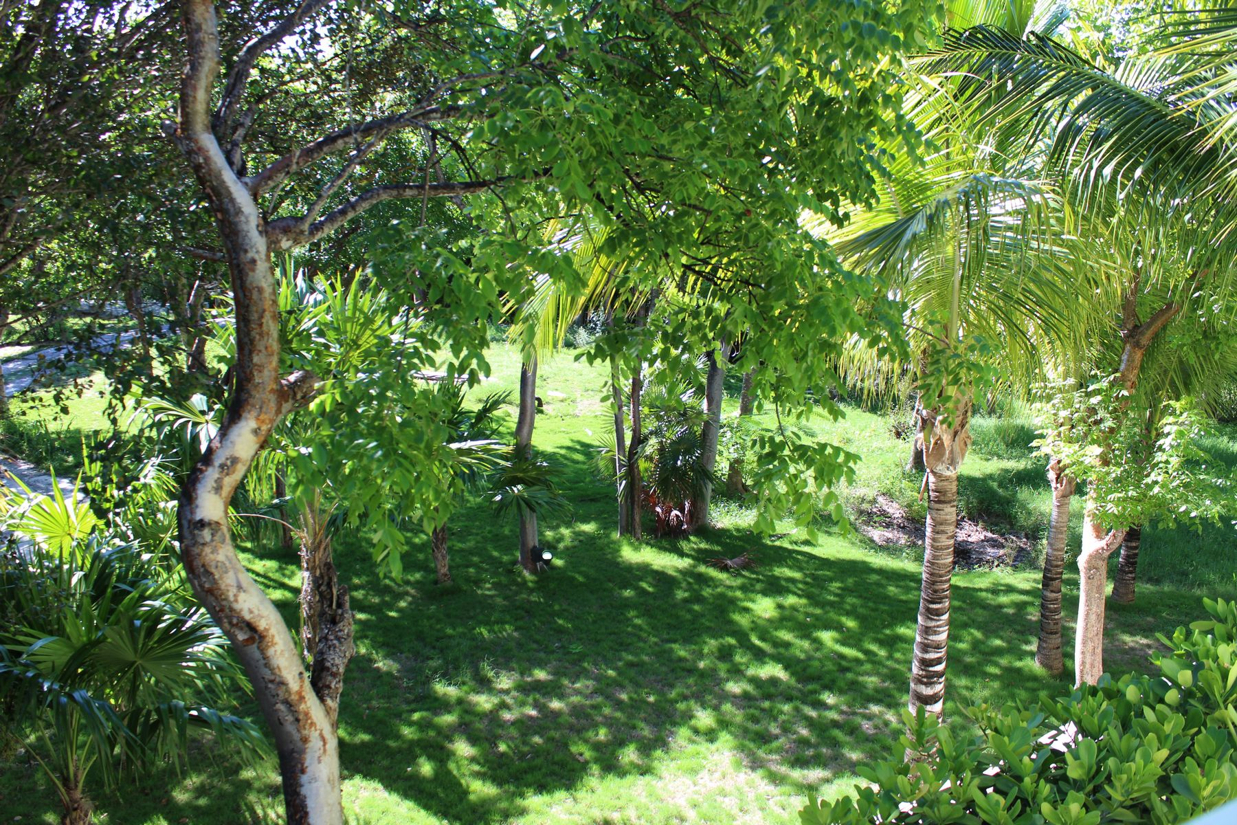 Land for Sale at Lot 38 Pink Sands Resort Harbour Island, Eleuthera Bahamas