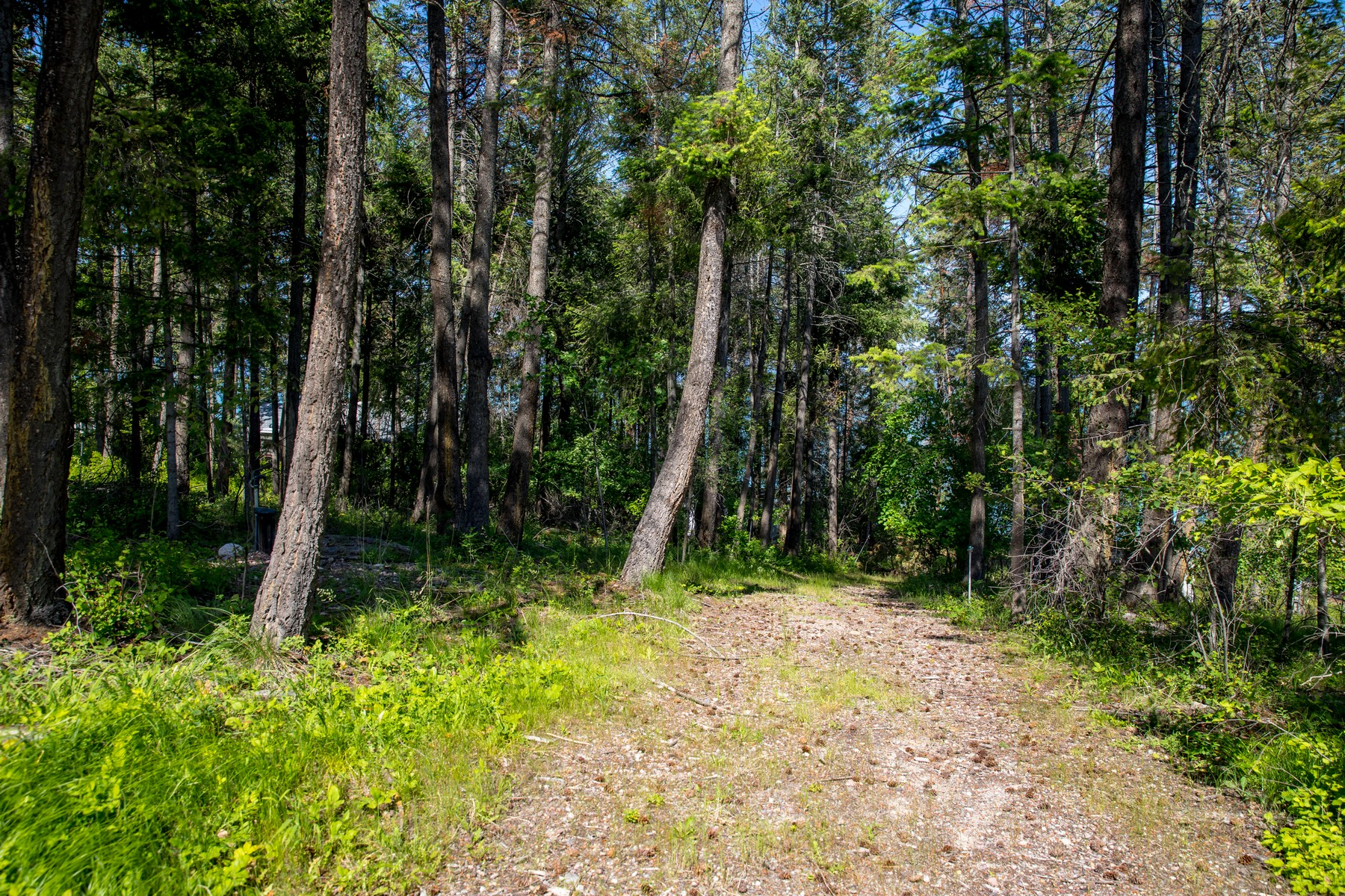 Land for Sale at 705/707 Conrad Point Road Lakeside, Montana 59922 United States