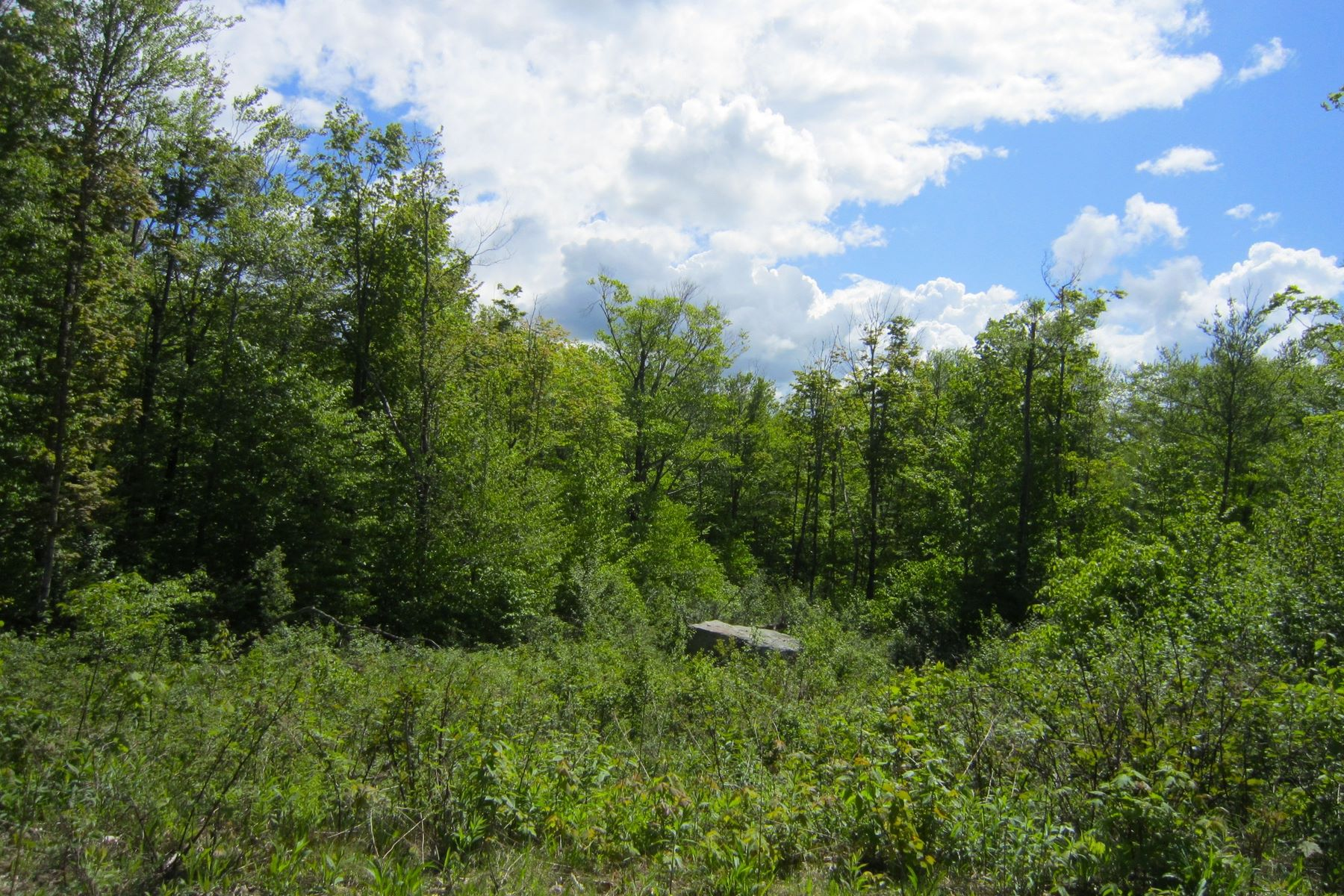 Land for Sale at Lot 5 Candeleros Court Ludlow, Vermont 05149 United States