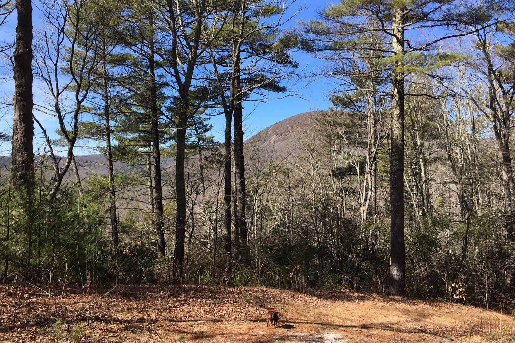 土地 为 销售 在 SouthCrest Bank Wildwood Forest Trail Highlands, 北卡罗来纳州, 28741 美国