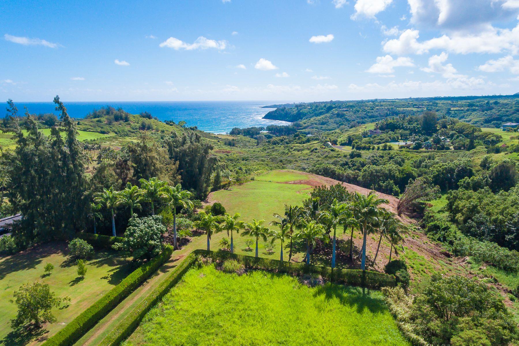 土地,用地 为 销售 在 La Paloma #1 Pali Moana Place #20A 基拉韦厄峰, 夏威夷 96754 美国