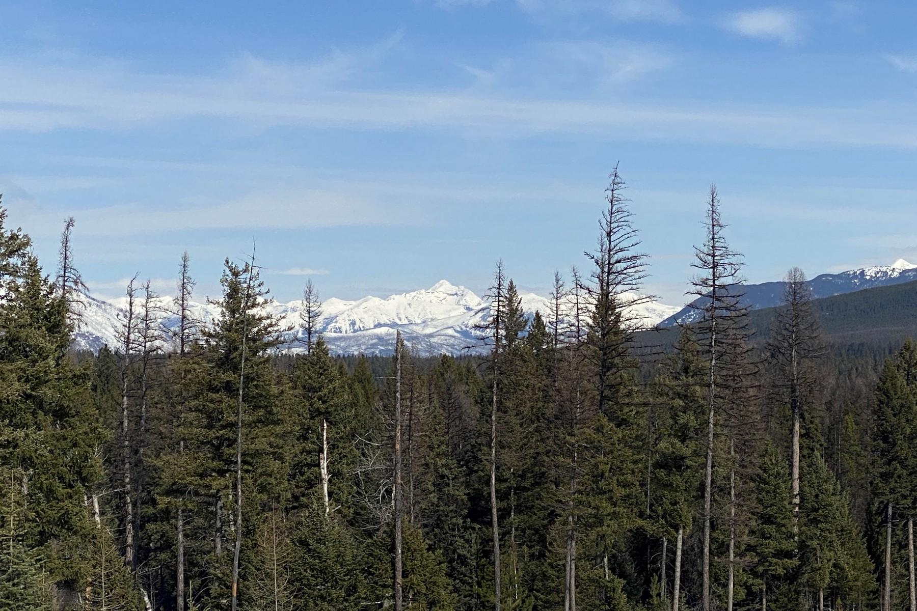 Land voor Verkoop op GLACIER HILLS, LOT 2 23 Glacier Hills Circle, Martin City, Montana 59926 Verenigde Staten