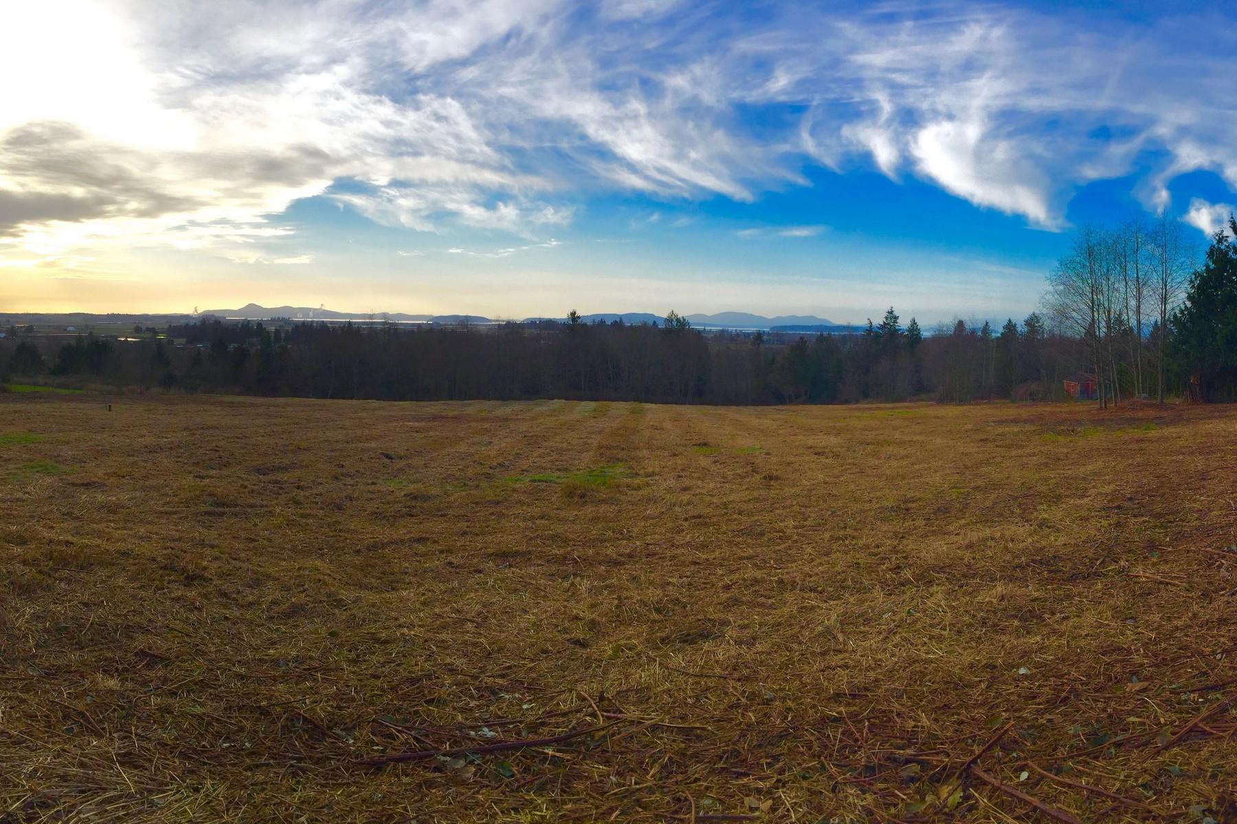 Land for Sale at Outstanding 5 Acres in Bow Washington XXXX Cedar Drive Bow, Washington, 98232 United States