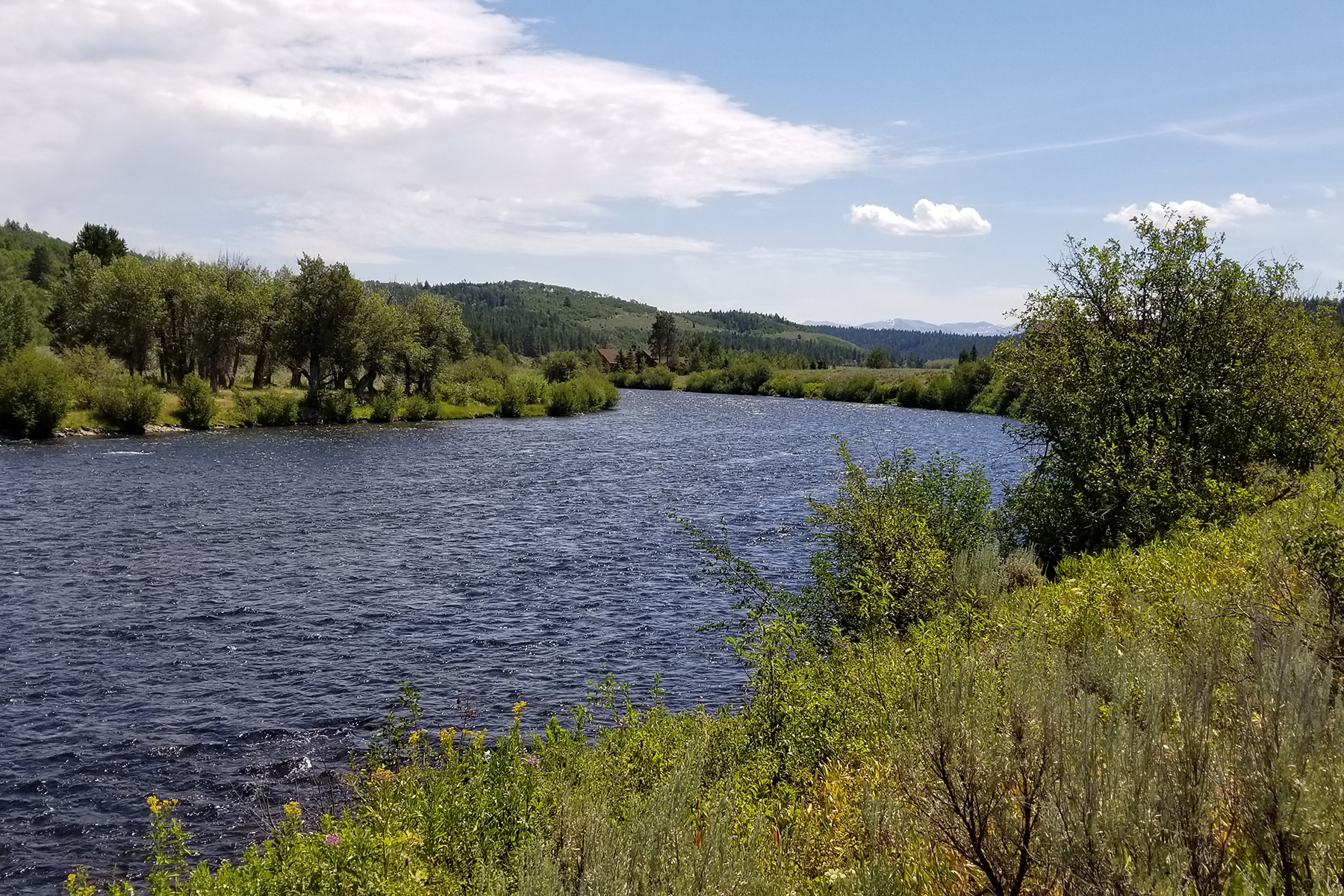 Land for Sale at 4651 River Hollow Dr Ashton, Idaho 83420 United States