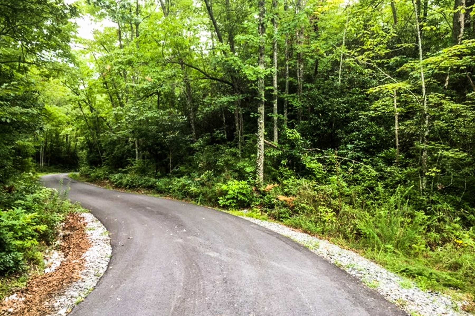 Land for Active at HIGHLAND FOREST TBD Heather Circle , Lots 1-8 Combined/Unit 3 Brevard, North Carolina 28772 United States