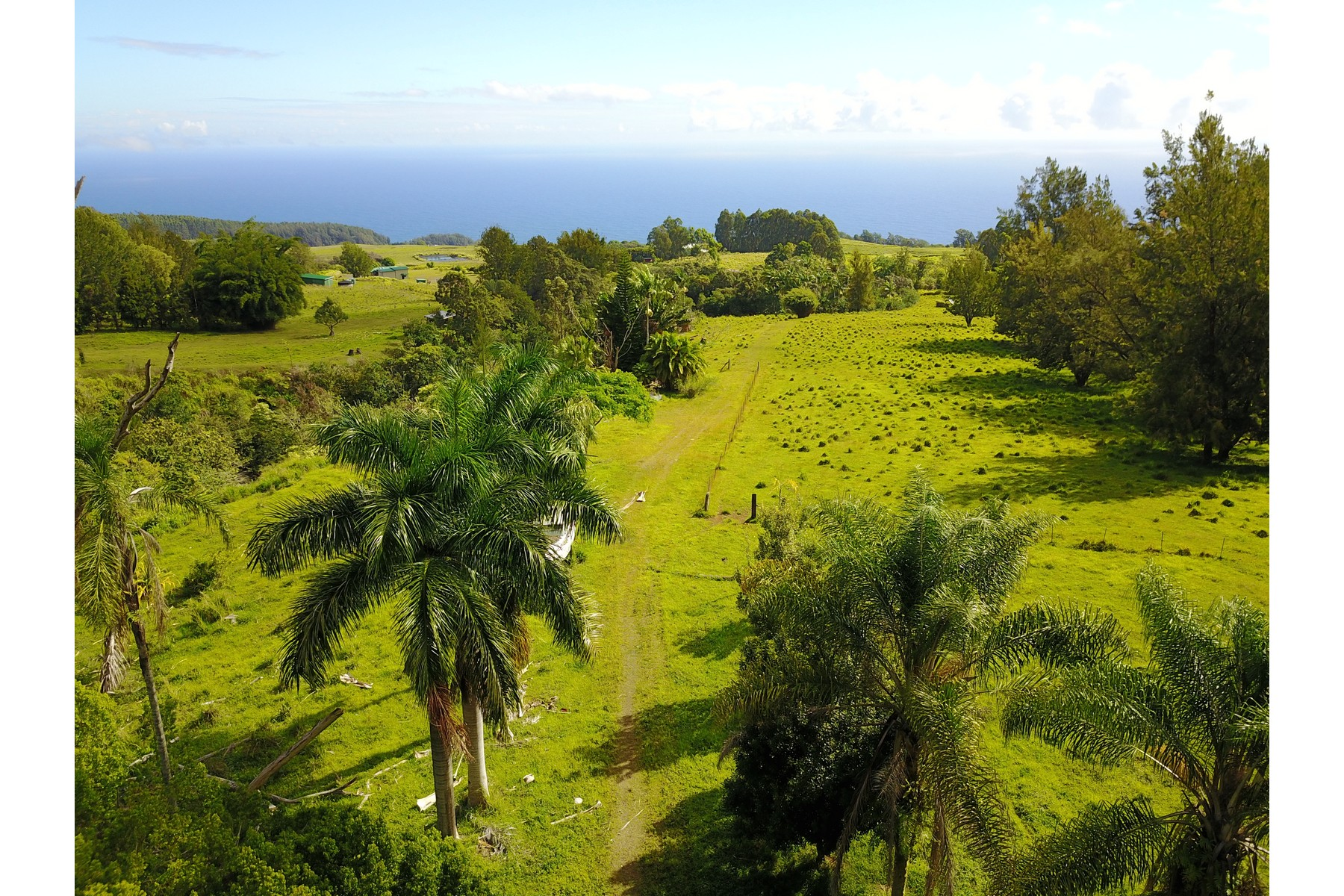 Land for Active at Waipunalei & Laupahoehoe 36-570 Spencer Road Laupahoehoe, Hawaii 96764 United States