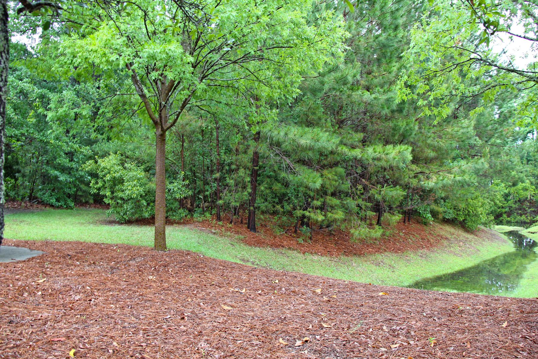土地 為 出售 在 Park West Vacant Land 3509 Salterbeck Street Mount Pleasant, 南卡羅來納州, 29466 美國