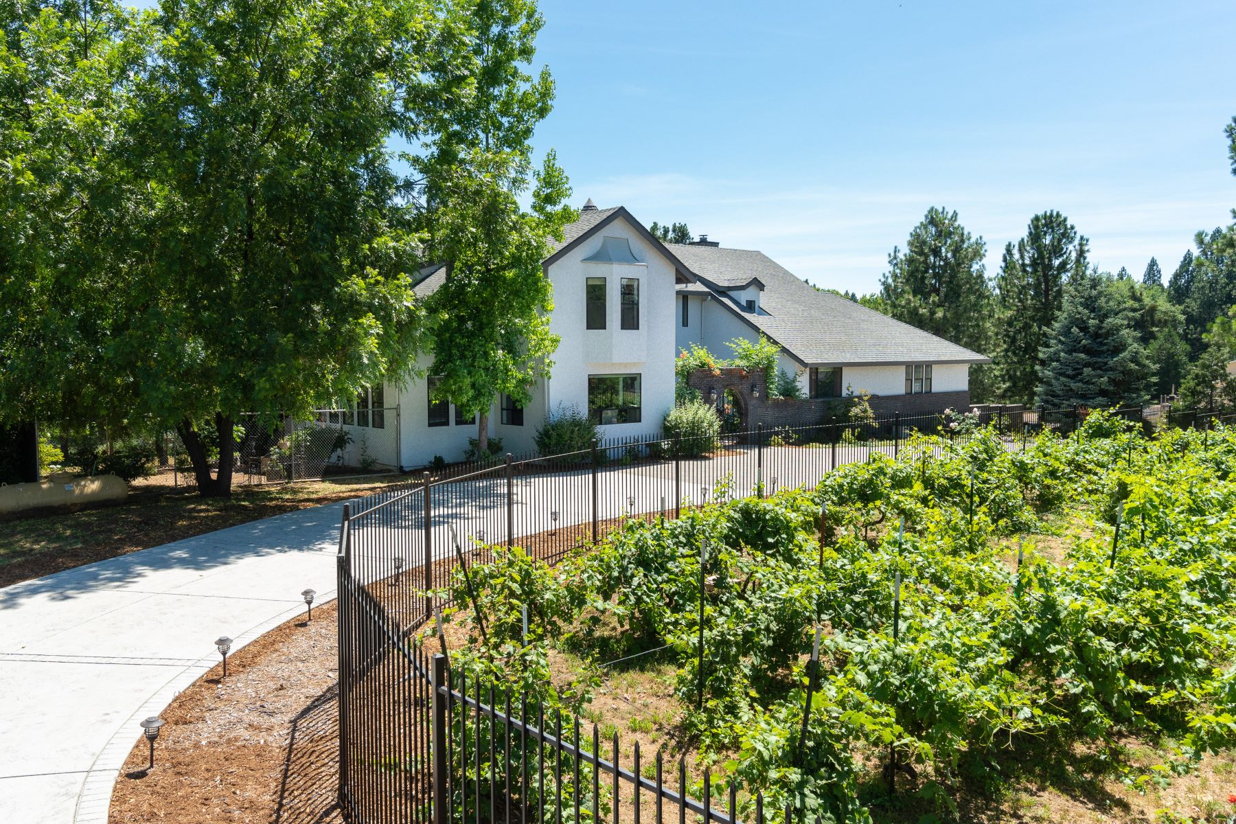 Single Family Homes for Active at Horse & Vineyard Foothill Estate 24000 Lark Lane Volcano, California 95689 United States