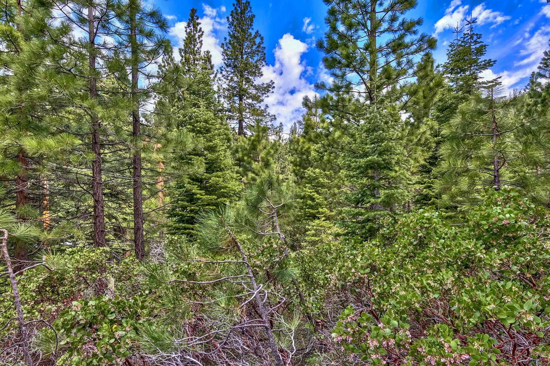 Additional photo for property listing at 325 Woodridge, Incline Village, Nevada 325 Woodridge Way Incline Village, Nevada 89451 United States