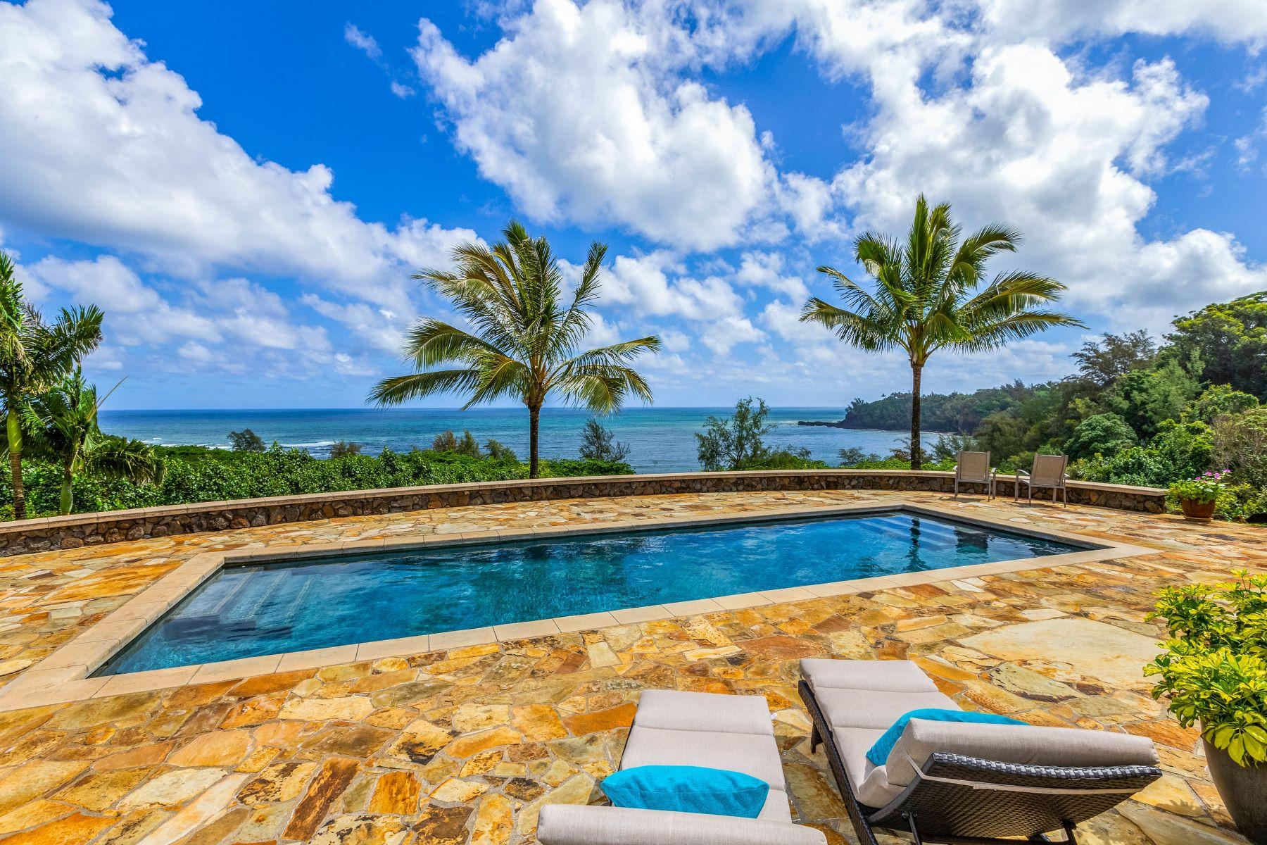 Single Family Homes for Active at Kalihiwai Bay View Estates 3265 Anini Road #A Kilauea, Hawaii 96754 United States