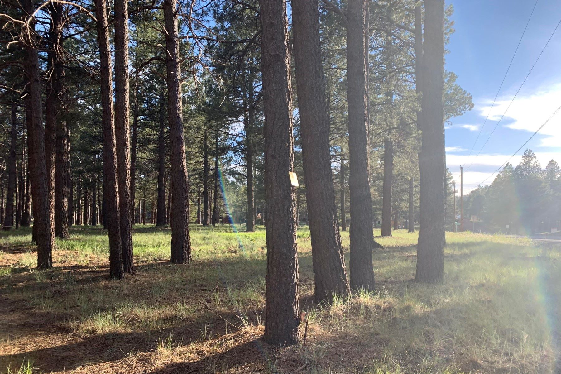 Land for Active at Spring Valley Road 13032 E King John RD Parks, Arizona 86018 United States
