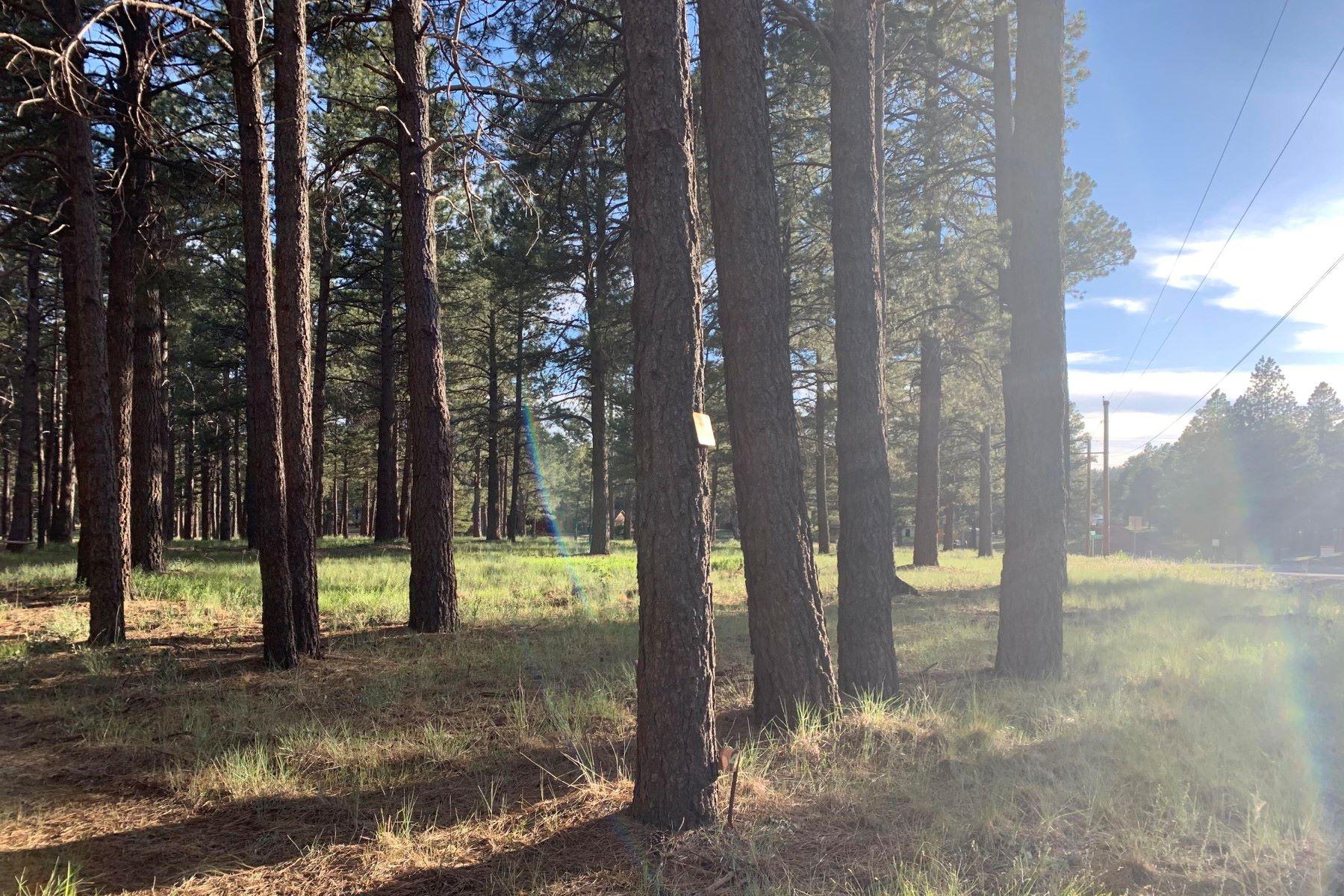 土地,用地 为 销售 在 Spring Valley Road 13032 E King John RD 帕克斯, 亚利桑那州 86018 美国