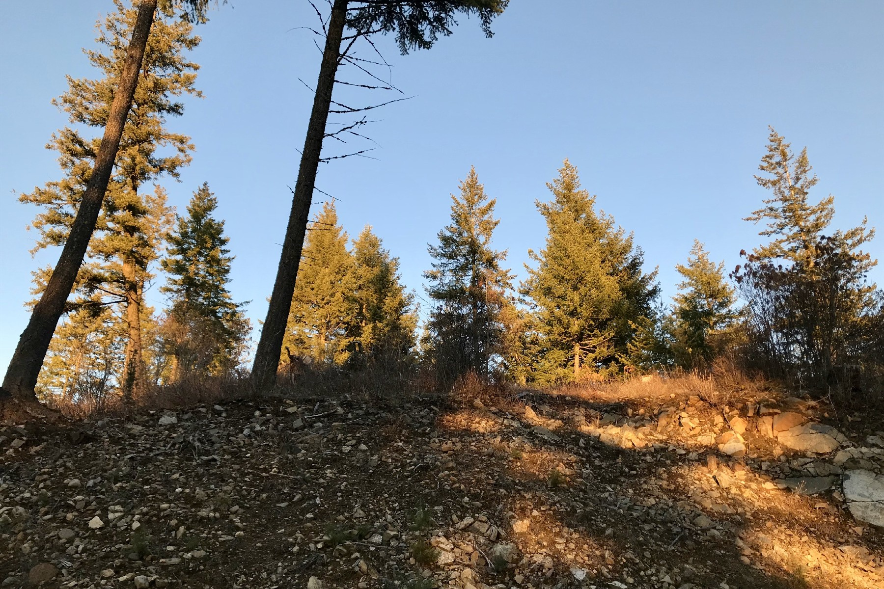 Land for Sale at The Idaho Club D-12 Whitecloud Drive Sandpoint, Idaho 83864 United States