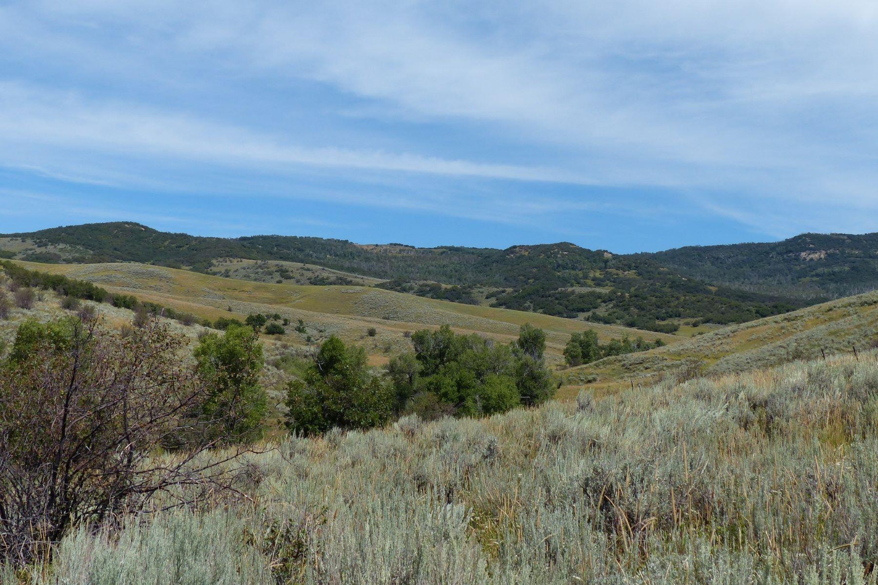 토지 용 매매 에 Prime Hunting Property RCR 56, Hayden, 콜로라도, 81639 미국