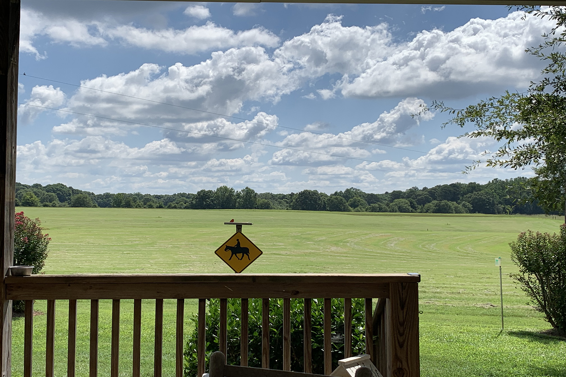 Additional photo for property listing at Picturesque Gated Property With Rolling Pastures Just South of Atlanta 129 Mattox Road, Newnan, ジョージア 30263 アメリカ