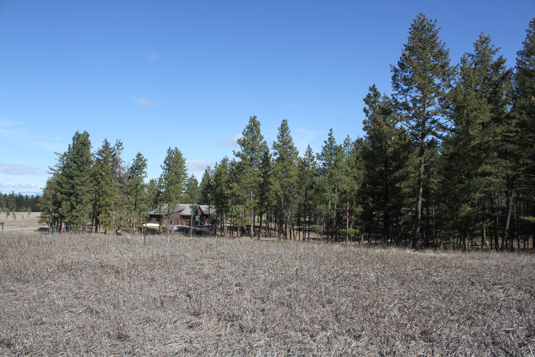 Additional photo for property listing at Wilderness Club Dr , Eureka, MT 59917  Eureka, Montana 59917 United States