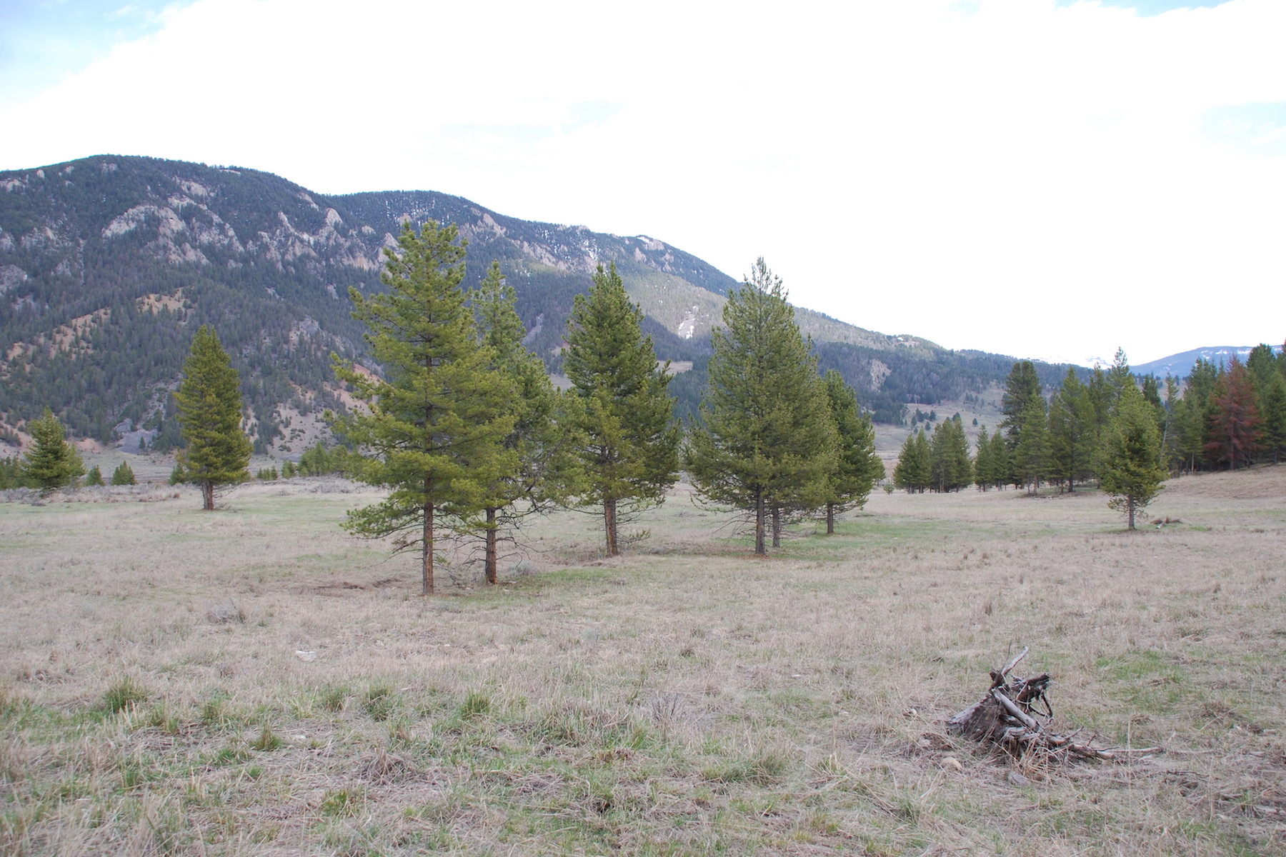 Land for Sale at Tract 1 Remainder, Section 5, Big Sky Hwy 191, Tr 1 Remainder, Sec 5, Big Sky, Montana, 59716 United States