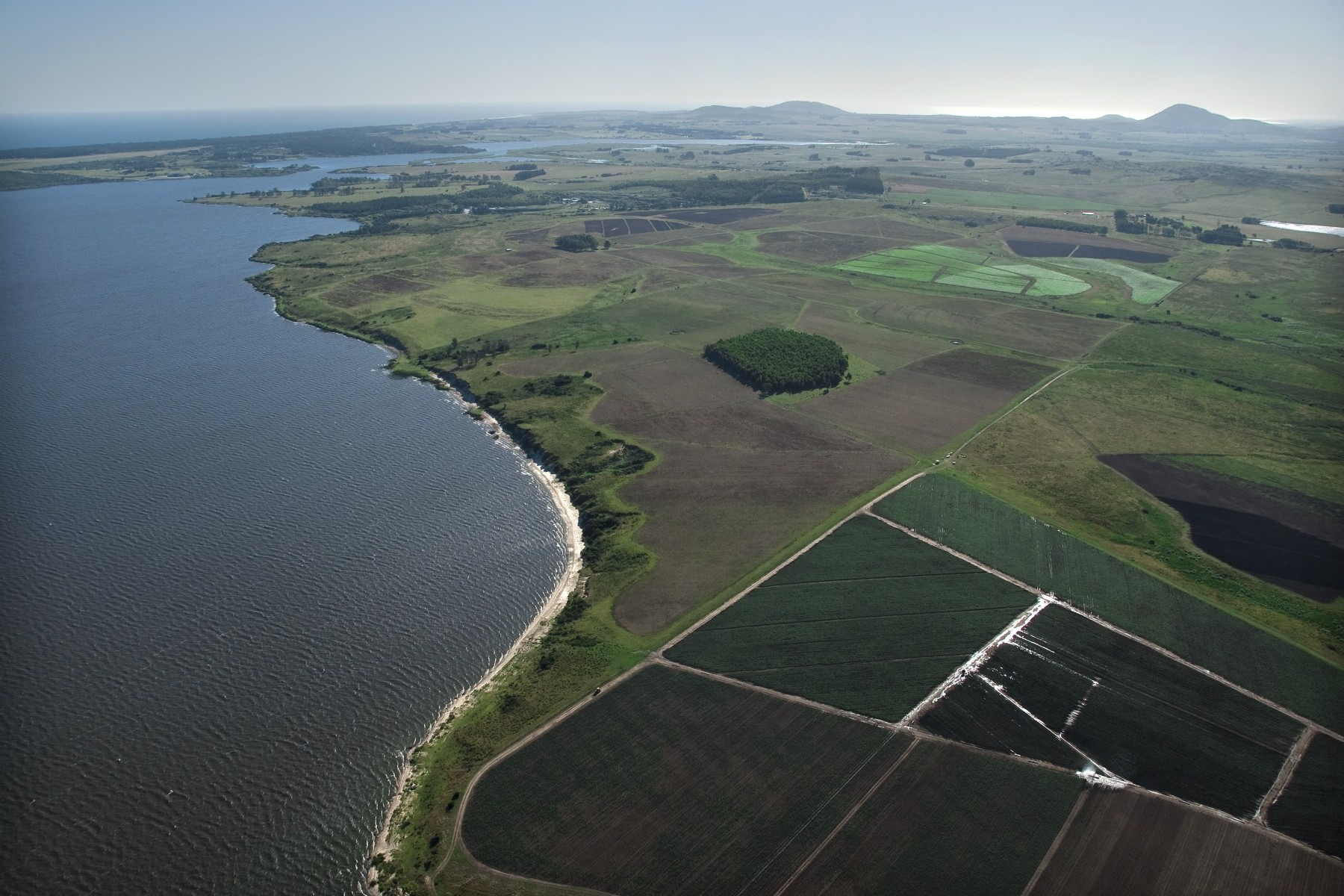 农场 / 牧场 / 种植园 为 销售 在 363 acre farm in Laguna del Sauce 马尔多纳多, 马尔多纳多 乌拉圭