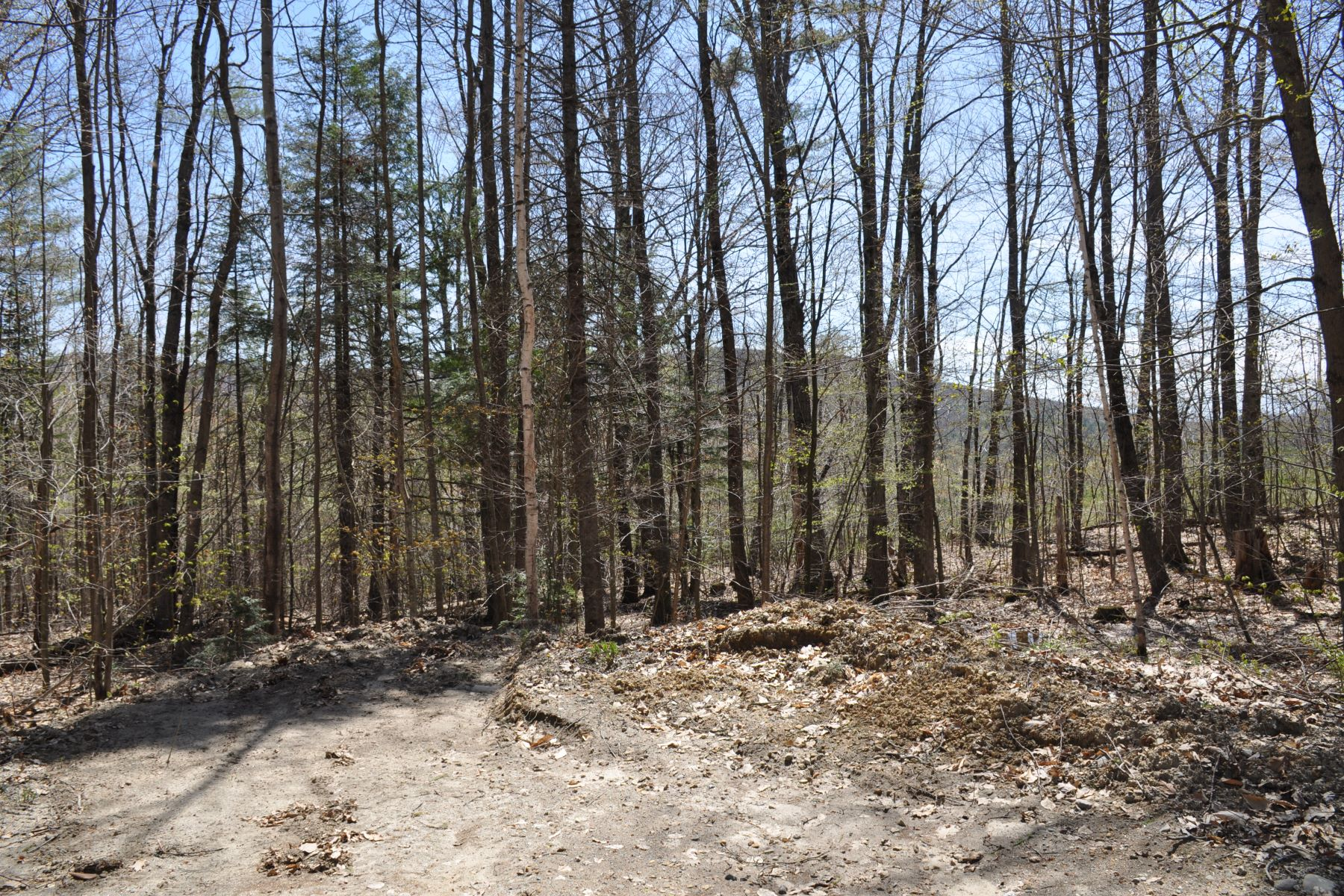 Land for Sale at Land Near Ragged Mountain 63.1 Seaward Dr Danbury, New Hampshire 03230 United States