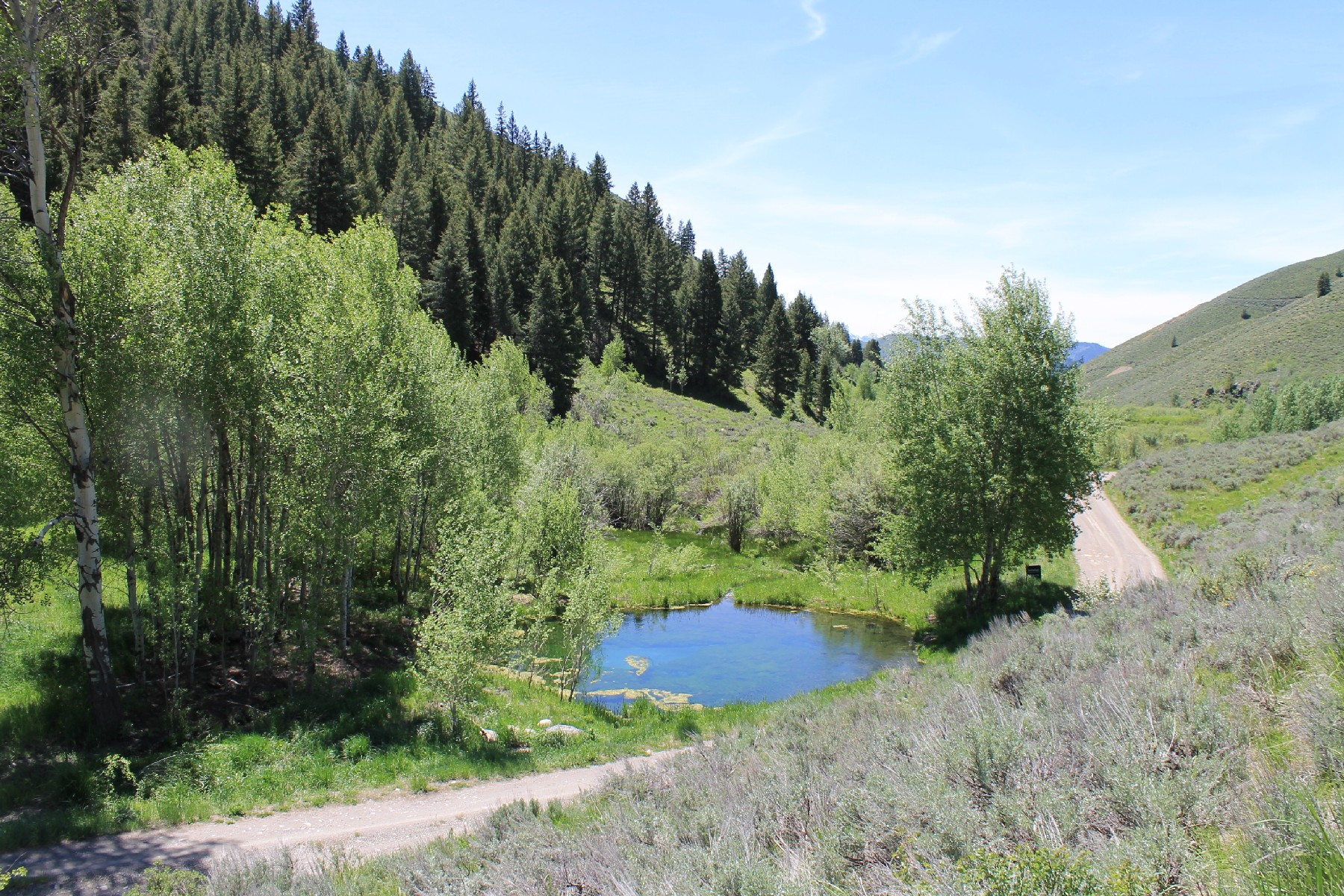 Additional photo for property listing at 20 Acres in Parker Gulch 921 Parker Gulch Road Sun Valley, Idaho 83353 États-Unis