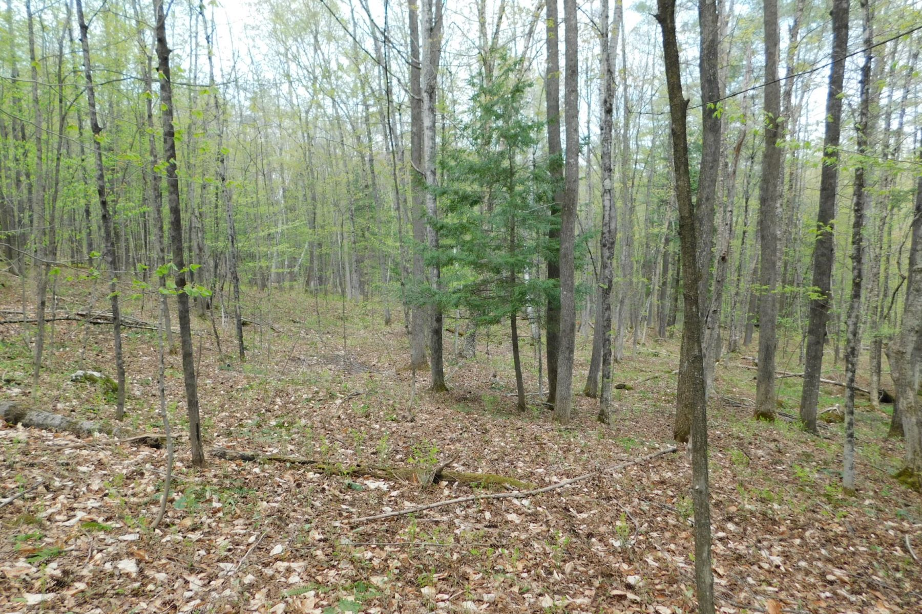 Land for Sale at 410 Leon's Lane Lot #2, Sharon 410 Leon's Ln Lot #2 Sharon, Vermont 05065 United States
