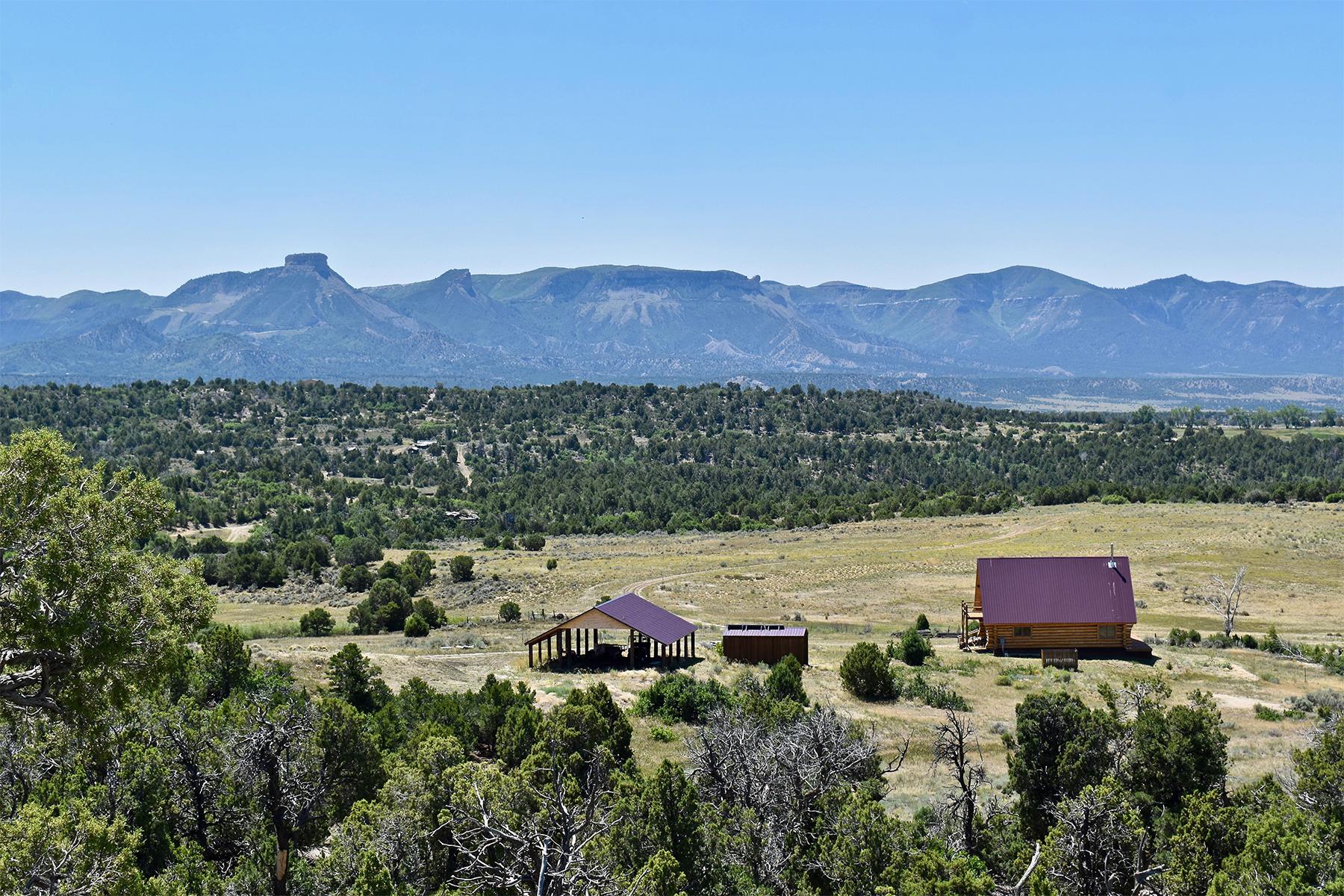 Maison unifamiliale pour l Vente à Wild Horse Ranch 13471 Road 34.5 Mancos, Colorado 81328 États-Unis