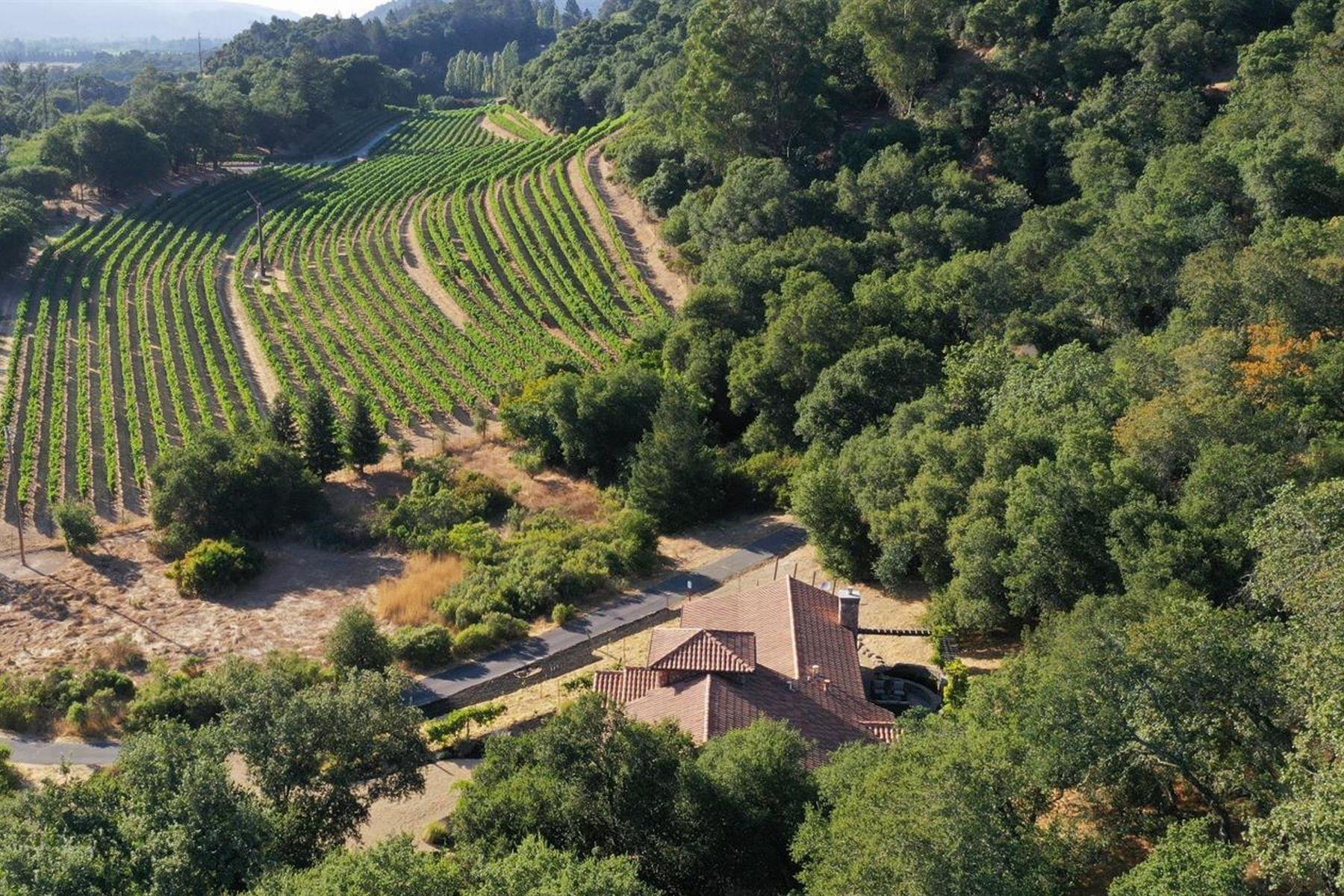 Single Family Homes for Sale at European Inspired Napa Valley Estate 1560 Silverado Trail St. Helena, California 94574 United States