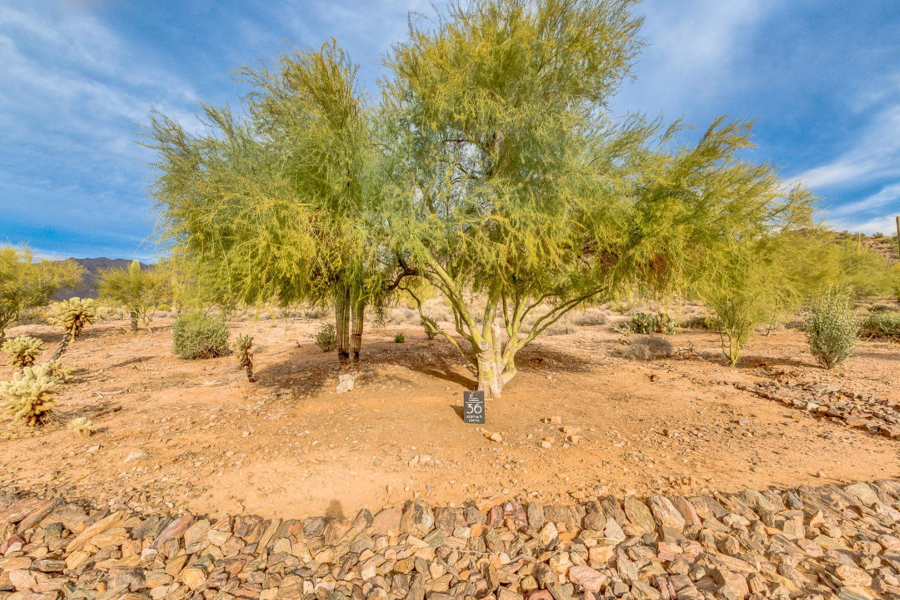 Land for Active at Gorgeous 1 Acre Lot 5179 S DESIERTO LUNA WAY 36 Gold Canyon, Arizona 85118 United States