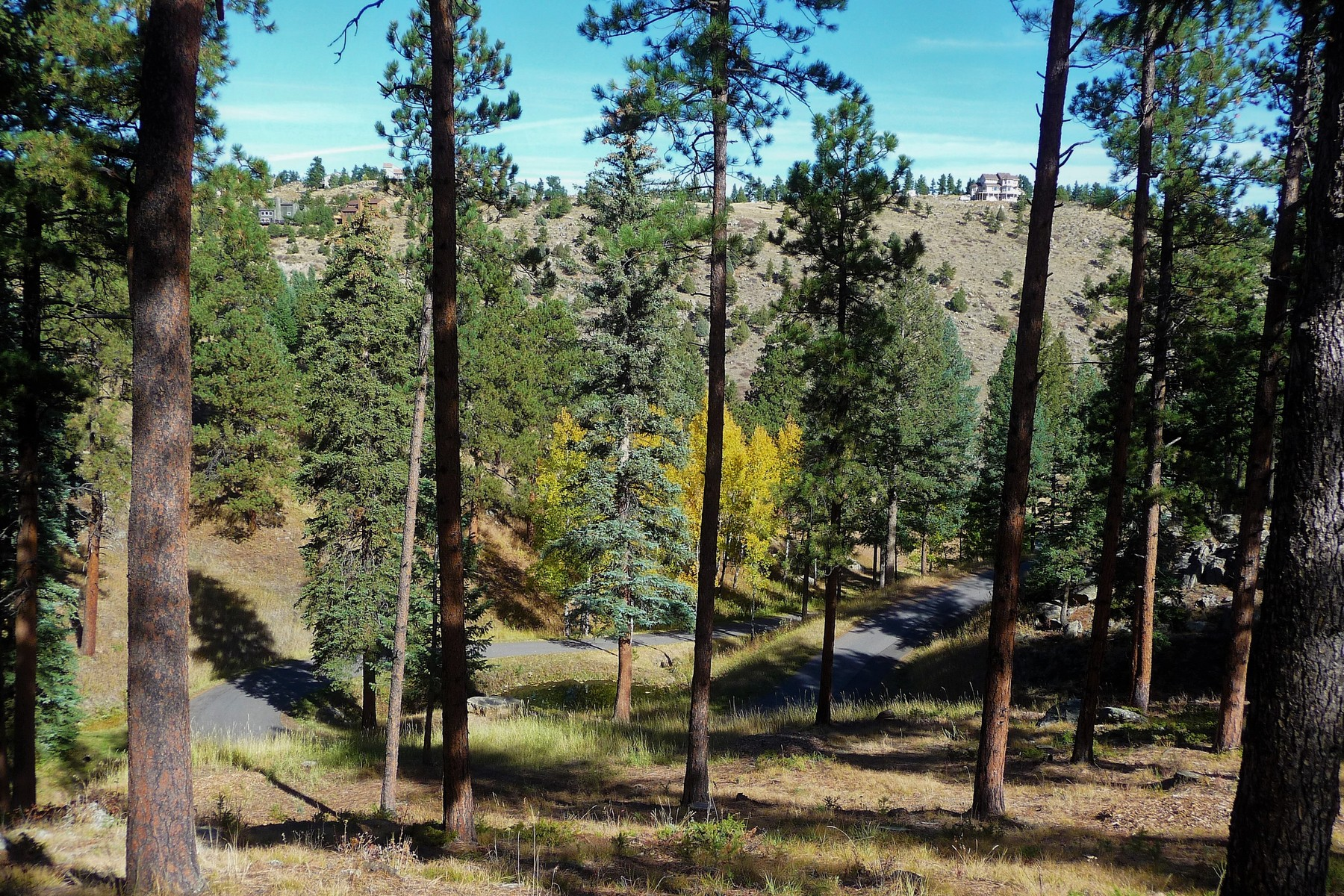 Land for Active at One of the last great land opportunities in Evergreen 3325 Timbergate Trail Evergreen, Colorado 80439 United States