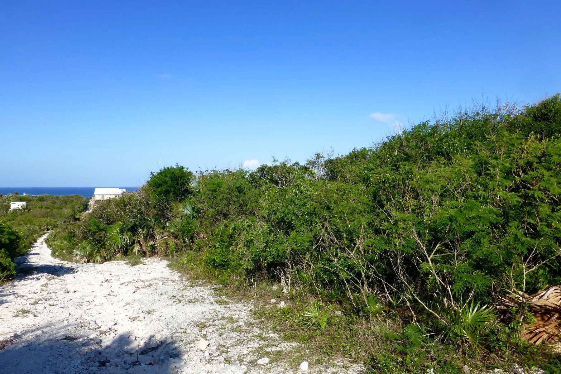 Land for Sale at Lot 9, Block 89, Section J Eleuthera Island Shores, Gregory Town, Eleuthera Bahamas