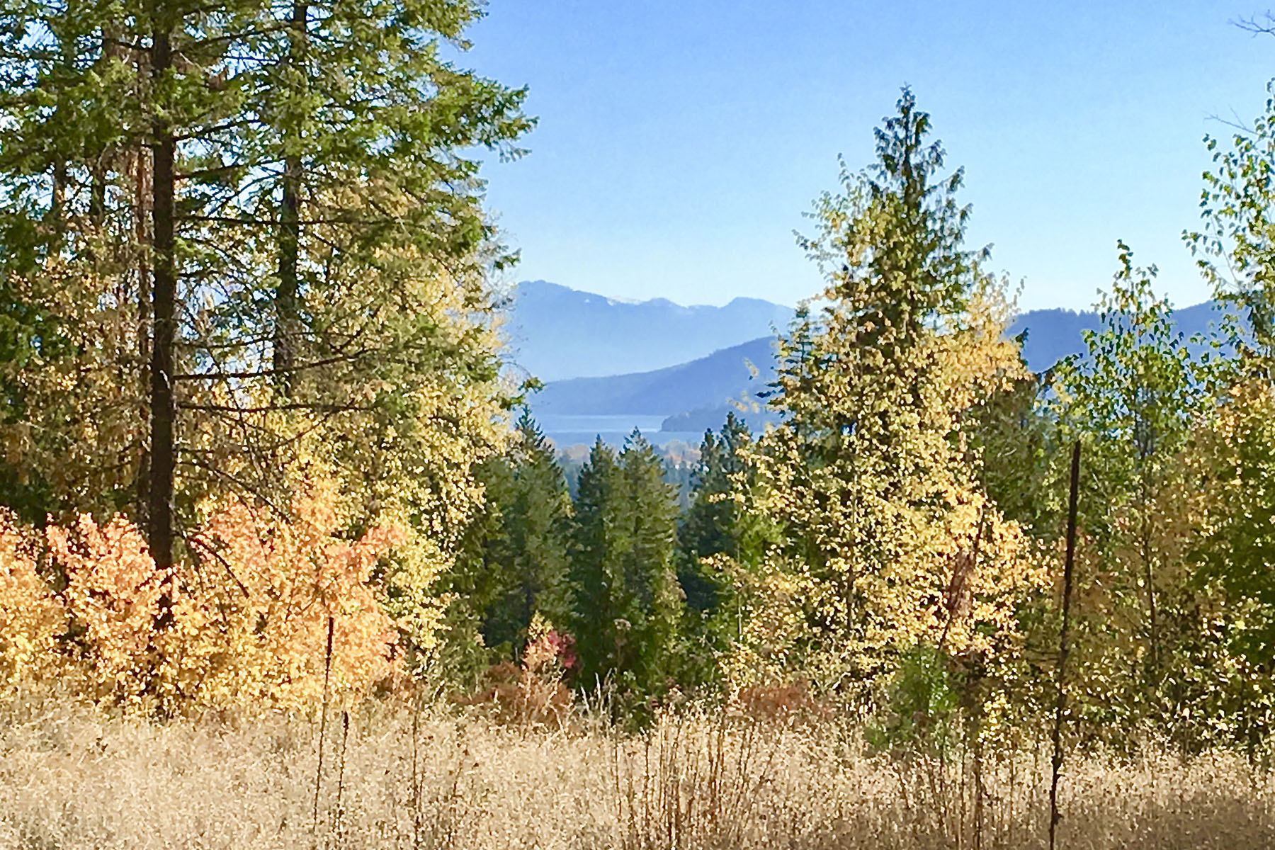 Build Your Dream on Over an Acre With Views 44 Mariposa Ct Sandpoint, Idaho 83864 United States