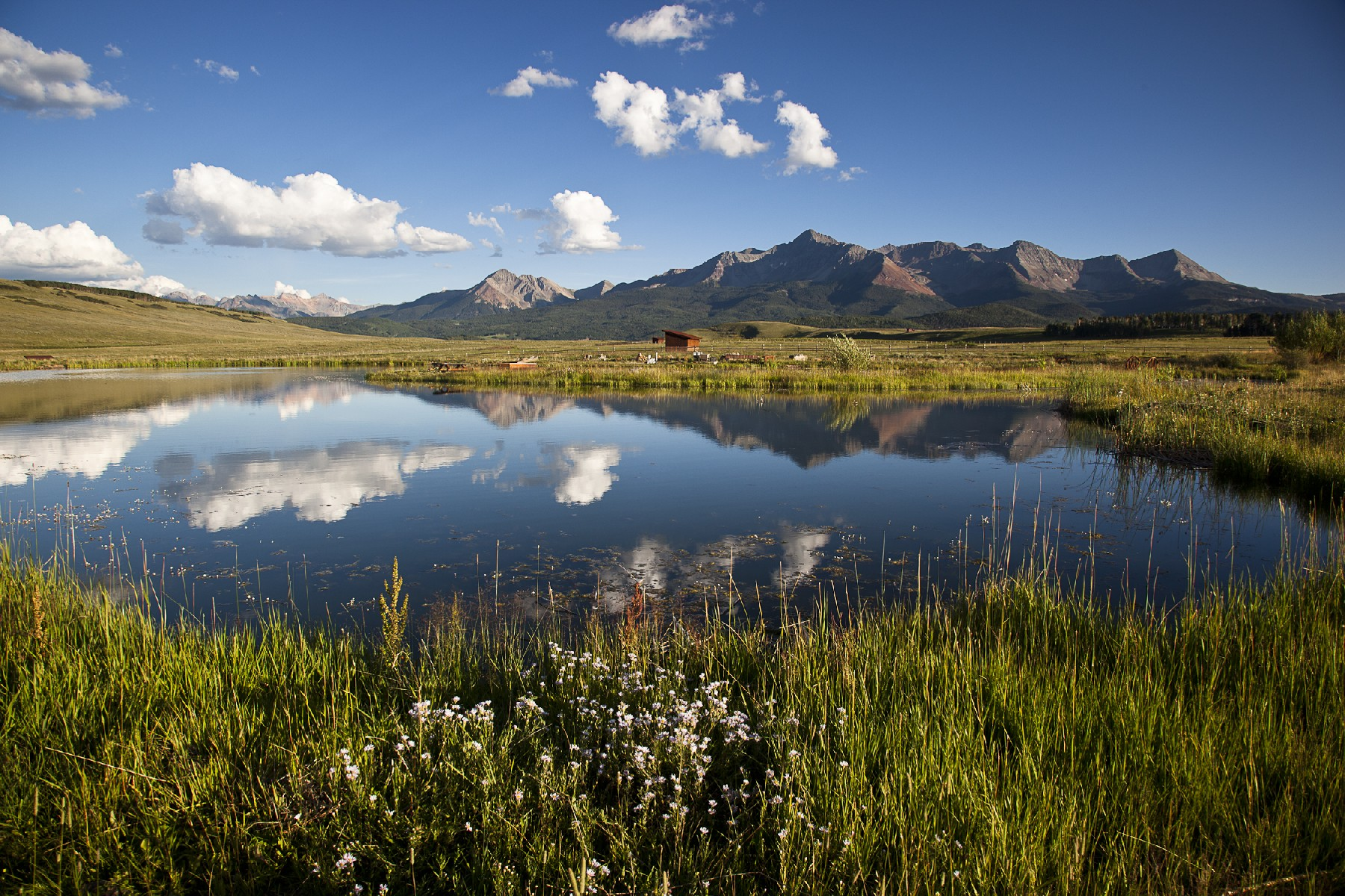 Farm / Ranch / Plantation for Active at Berman Buckskin Ranch 1305 Anderson Road Telluride, Colorado 81435 United States
