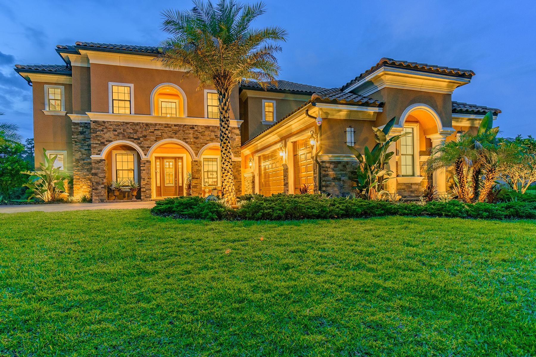 Single Family Homes por un Venta en LUTZ 3403 Crenshaw Lake Rd Lutz, Florida 33548 Estados Unidos