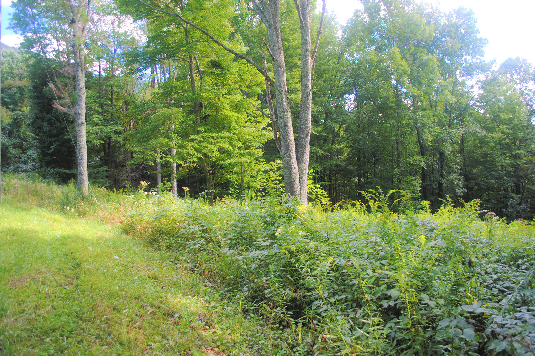 Land for Sale at RIVER BREEZE ESTATES - CRESTON Lot 7 River Breeze Dr Creston, North Carolina 28615 United States
