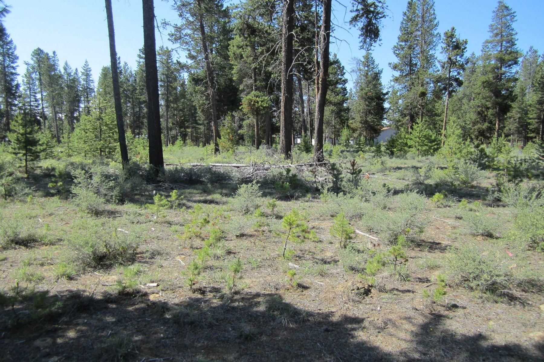 Terrain pour l Vente à 16055 Del Pino Drive La Pine, OR La Pine, Oregon 97739 États-Unis