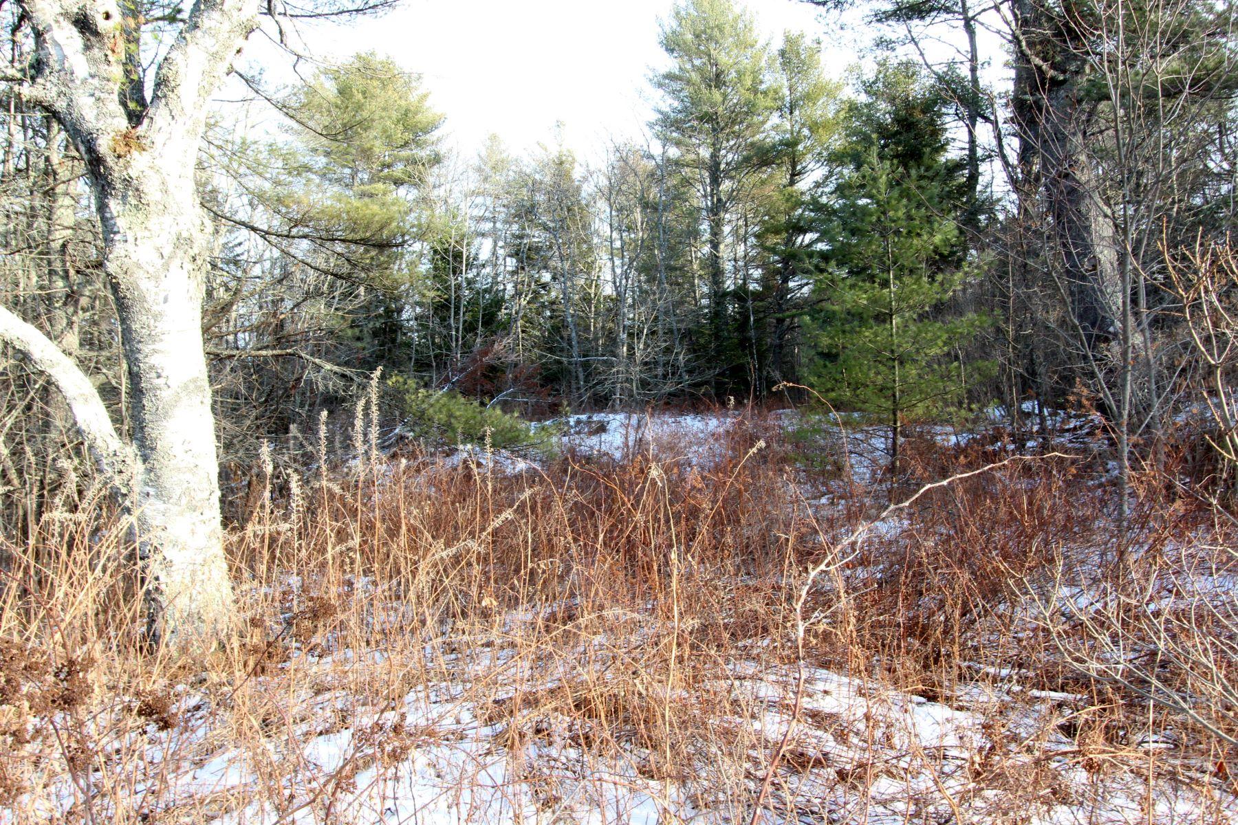أراضي للـ Sale في Map 208 / Lot 20 Cushing Rd Map 208 Lot 20, Friendship, Maine 04547 United States