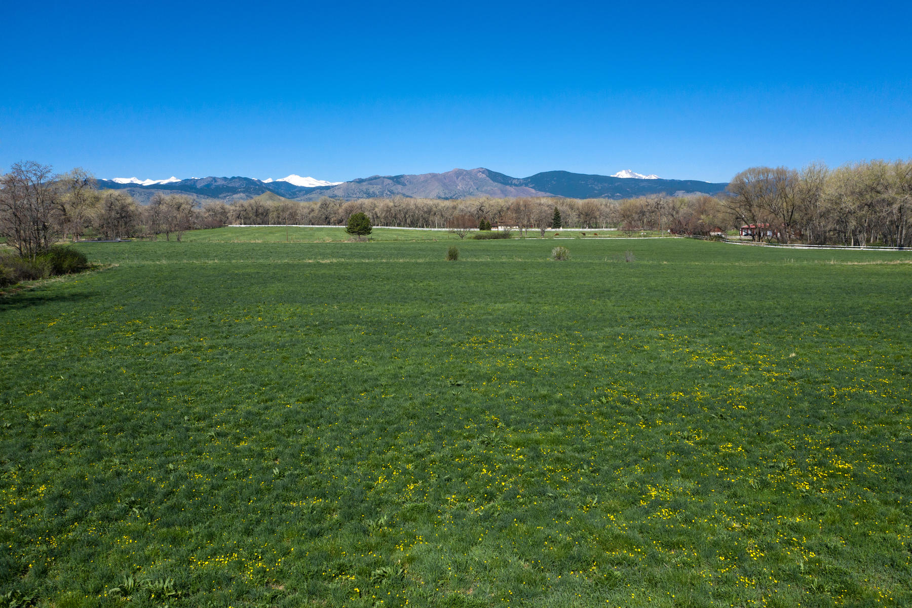Land for Sale at Plenty Of Land To Take In The Views 0 Nimbus Rd Niwot, Colorado 80503 United States