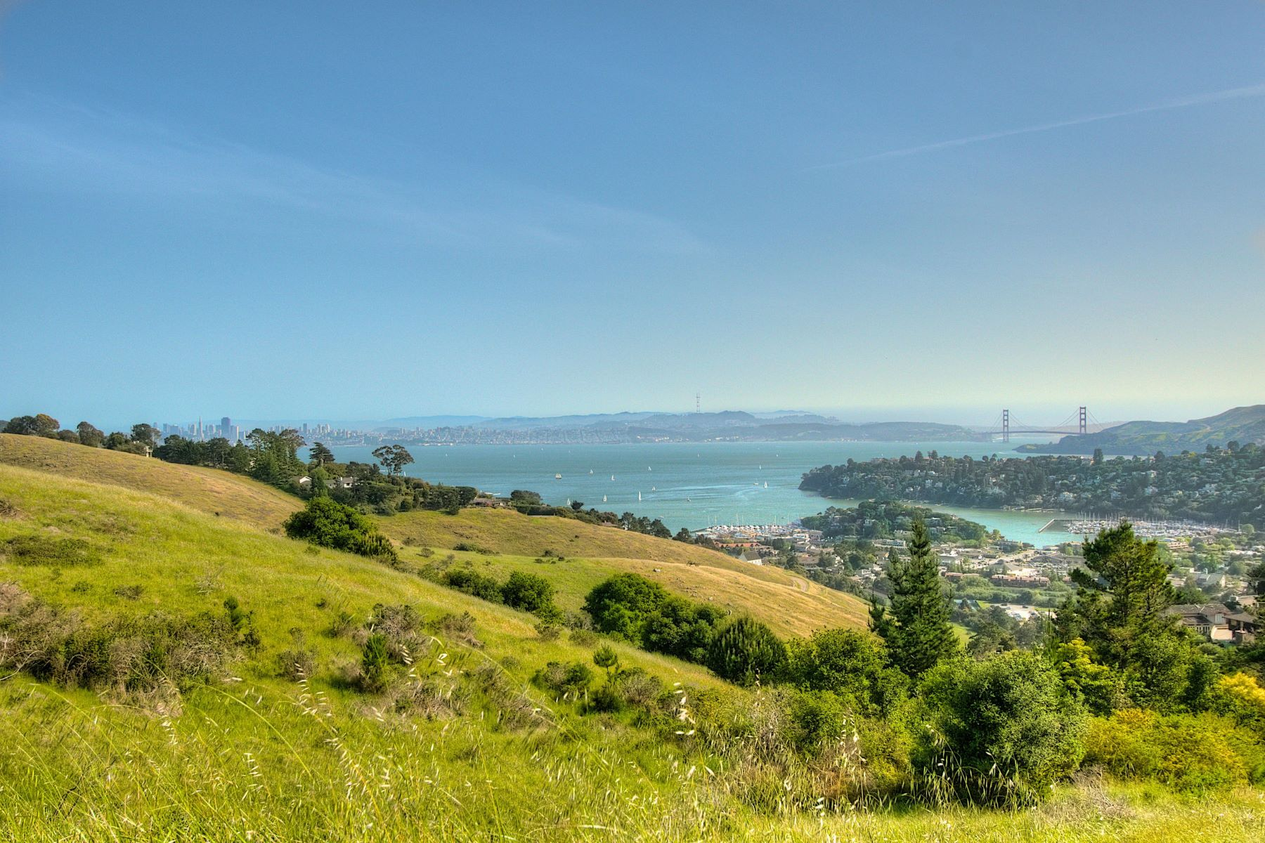 Additional photo for property listing at Simply Exquisite...Overlooking Point Tiburon Lagoon 18 Lagoon Vista Road Tiburon, Калифорния 94920 Соединенные Штаты