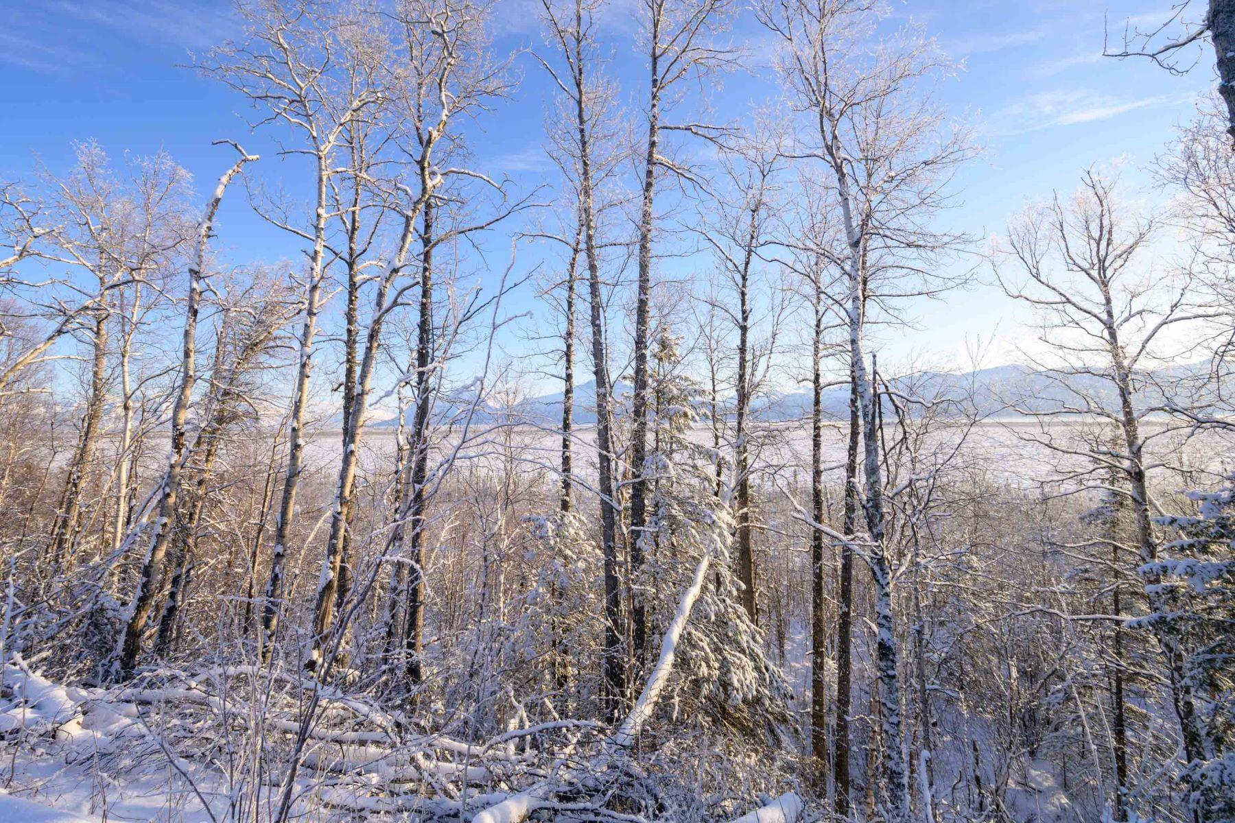 Terreno por un Venta en Glacier View Estates L6 B3 W. Chigmit Circle L6 B3 W. Chigmit Circle Wasilla, Alaska 99654 Estados Unidos