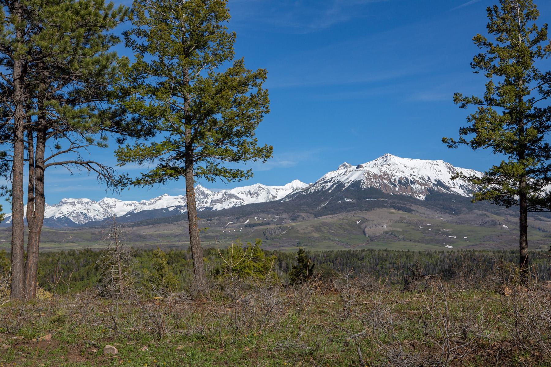 Terreno por un Venta en Parcel 8 South Grouse Parcel 8 South Grouse Placerville, Colorado 81430 Estados Unidos