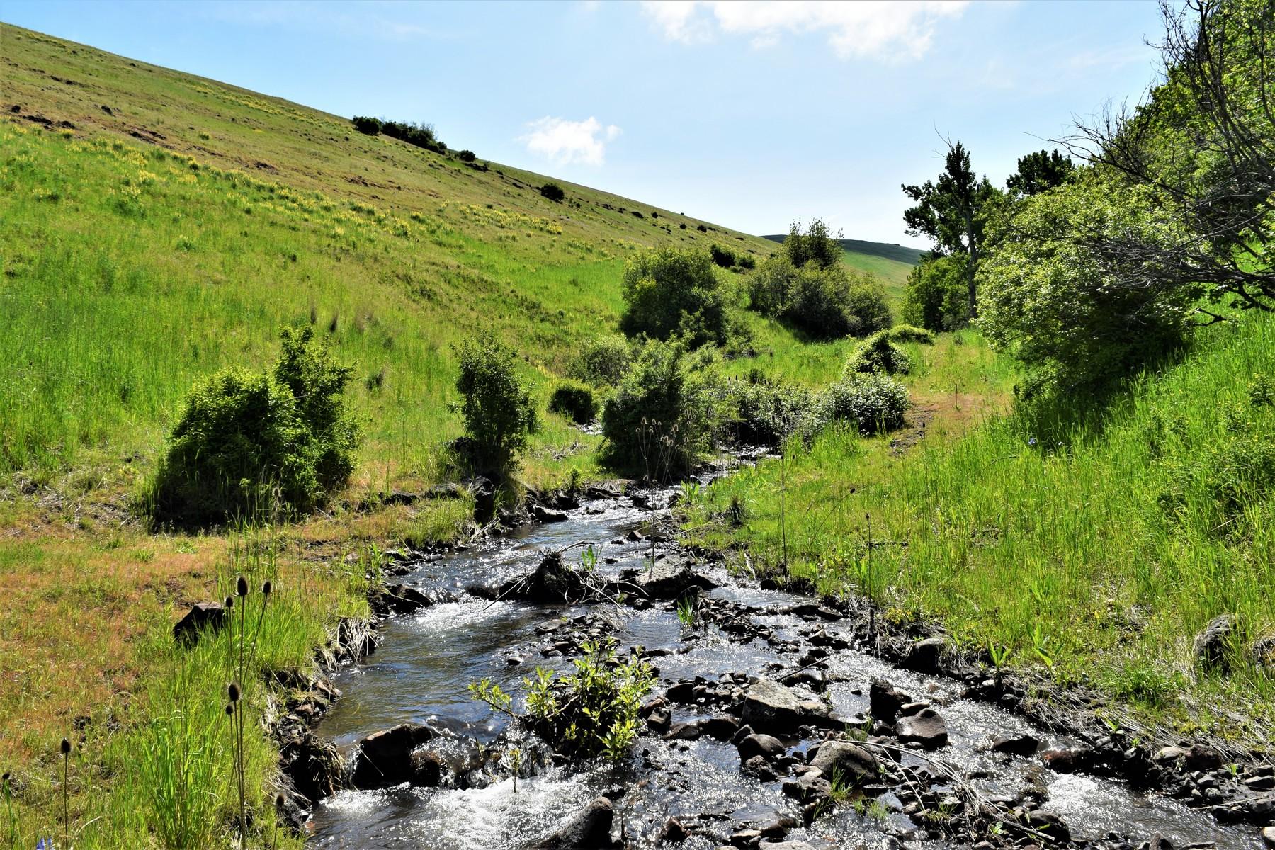 Ferme / Ranch / Plantation pour l Vente à Coyote Creek Ranch - Pendleton, OR 70015 Market Road, Pendleton, Oregon 97801 États-Unis
