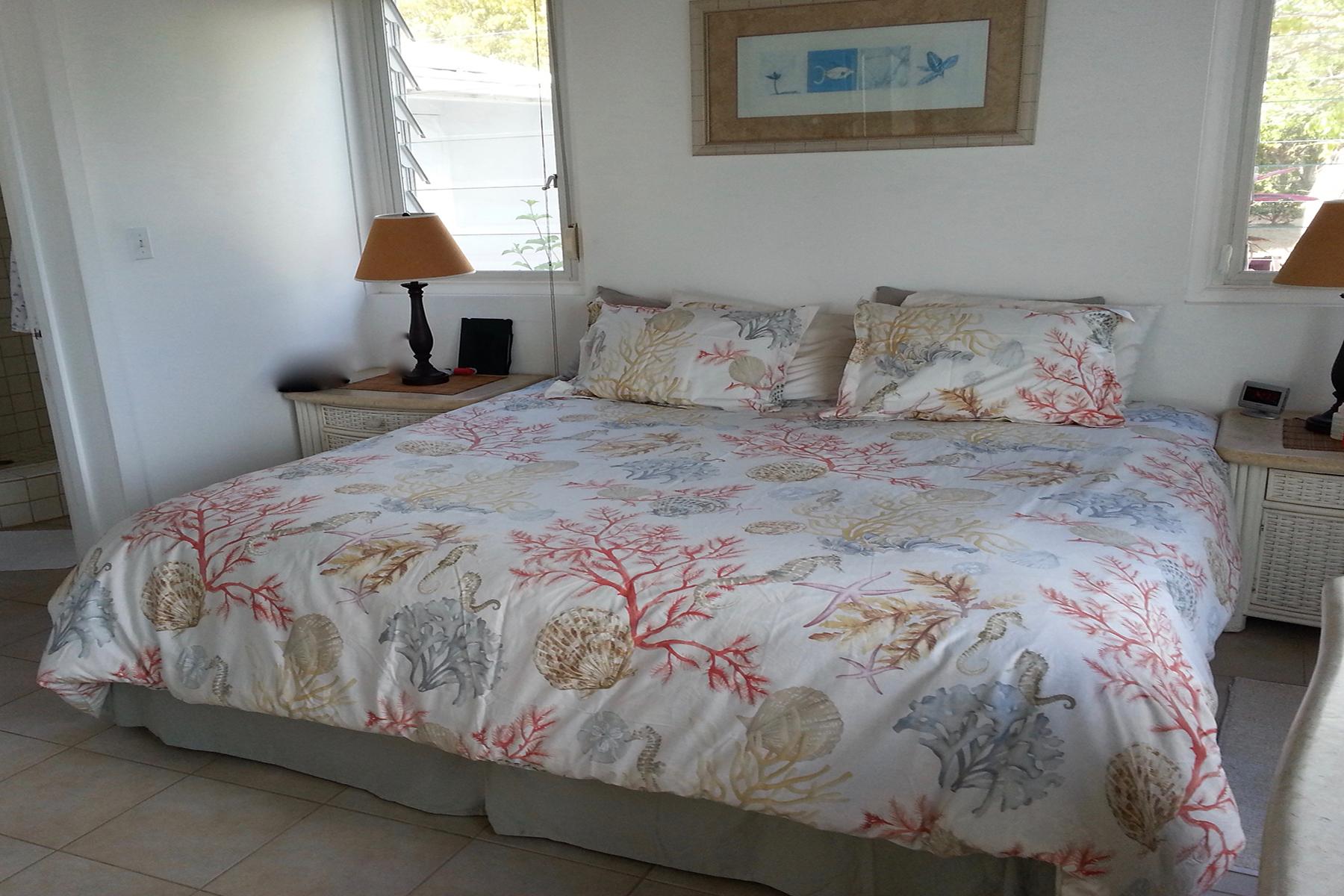 Additional photo for property listing at Indigo Point Indigo Estate, Грейт Каманоэ Британские Виргинские Острова
