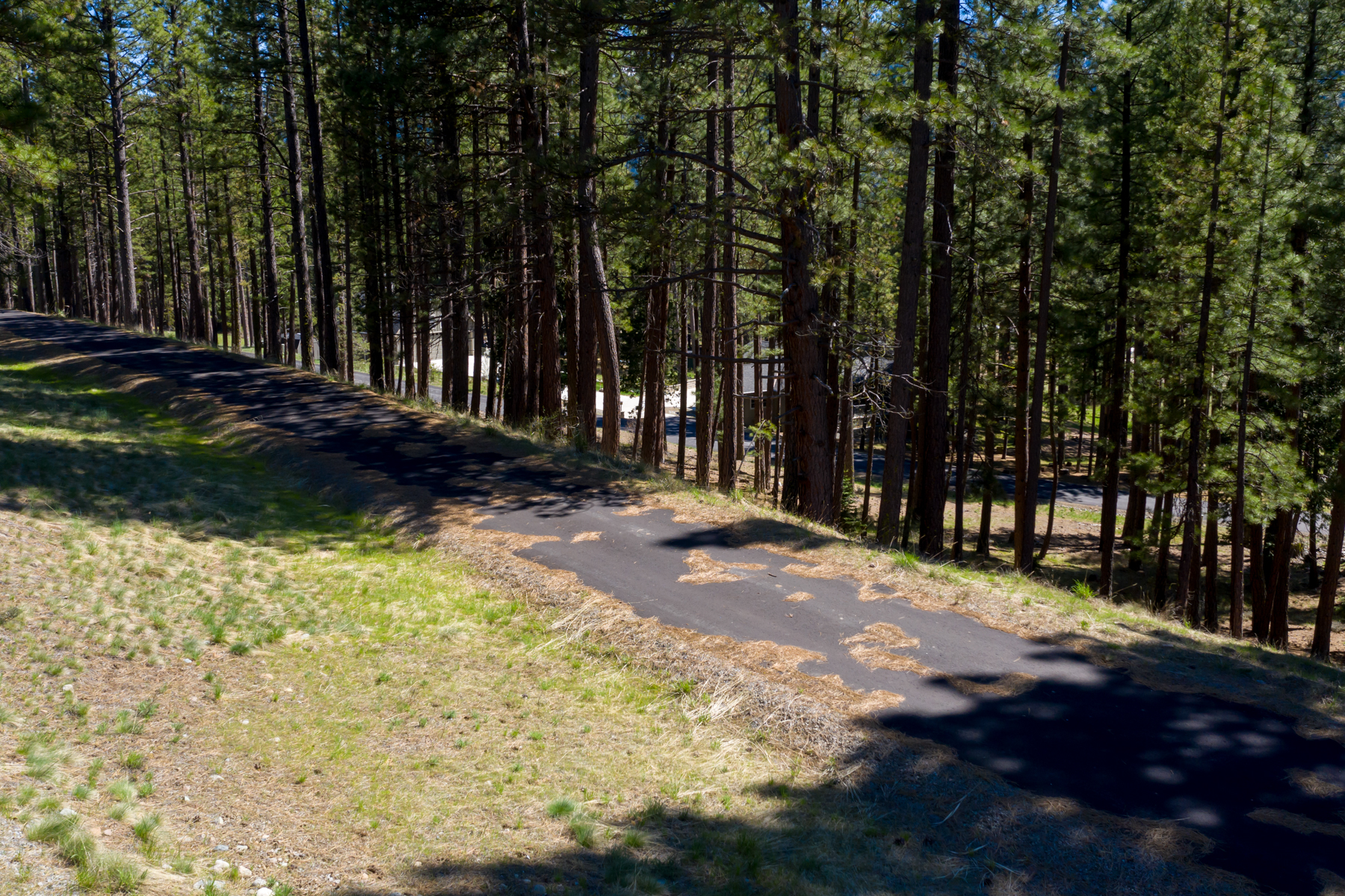 Additional photo for property listing at 249 Tantau Ranch Road Clio, 加利福尼亚州 96106 美国