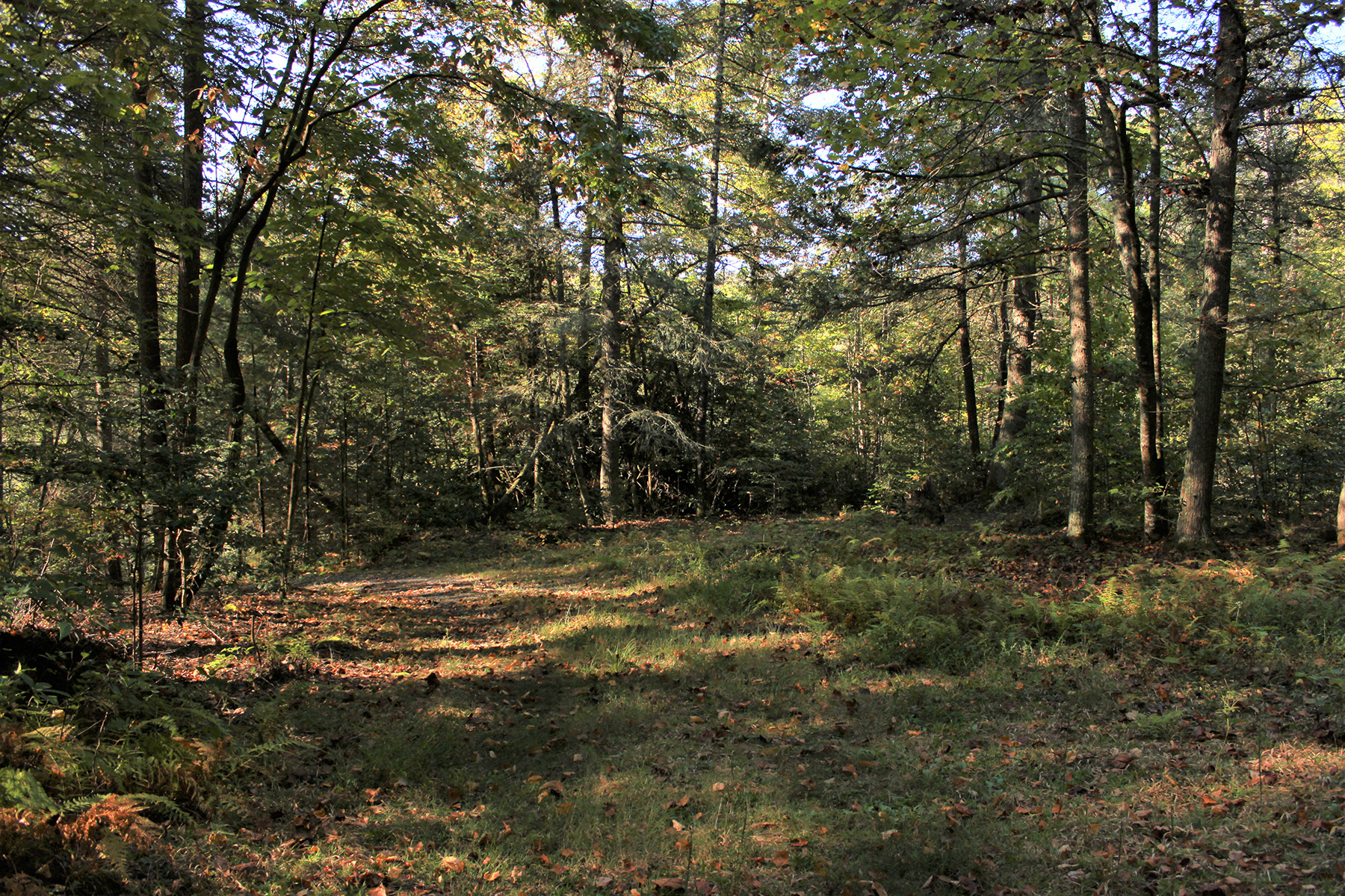 Land for Sale at LAUREL RIVER CROSSING 6 Caddis Ct , 6 Marshall, North Carolina 28753 United States