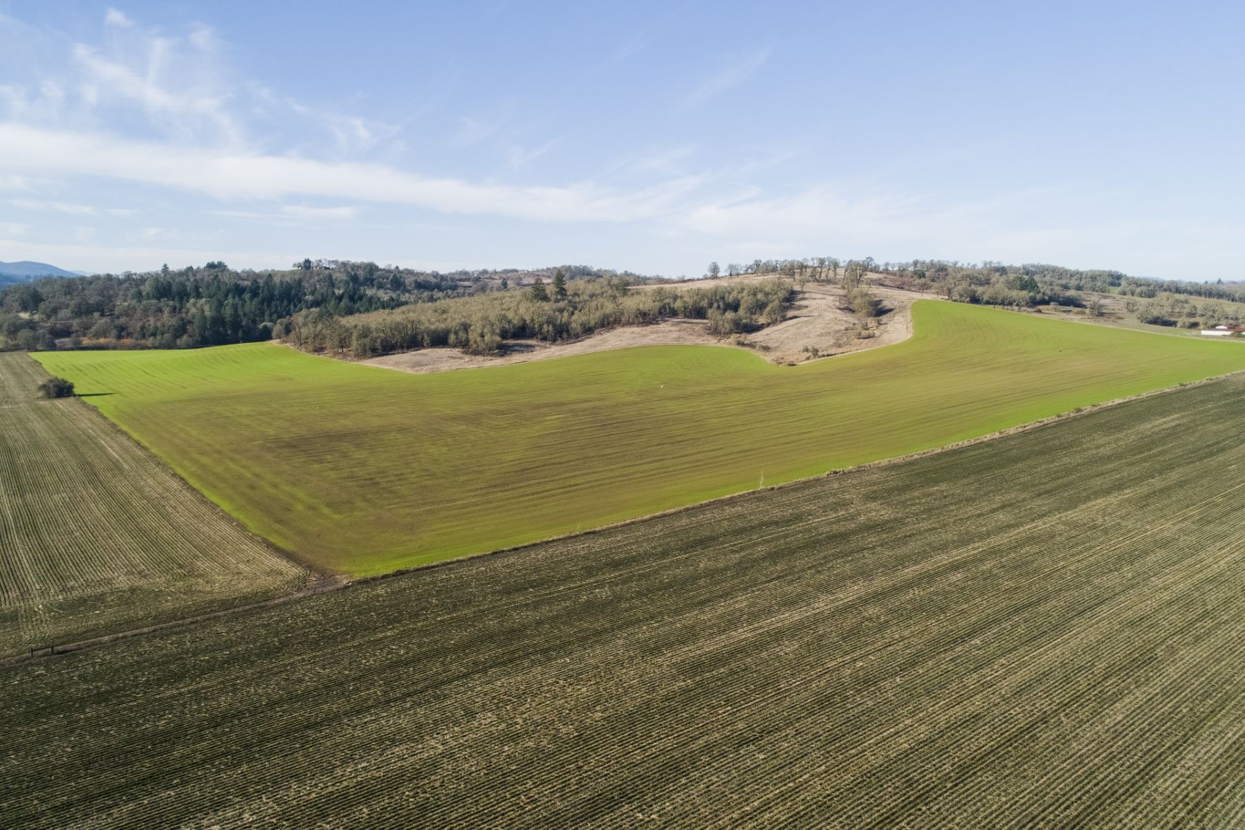 Land for Active at Prime Plantable Vineyard Land in Willamette Valley Perrydale RD Dallas, Oregon 97338 United States